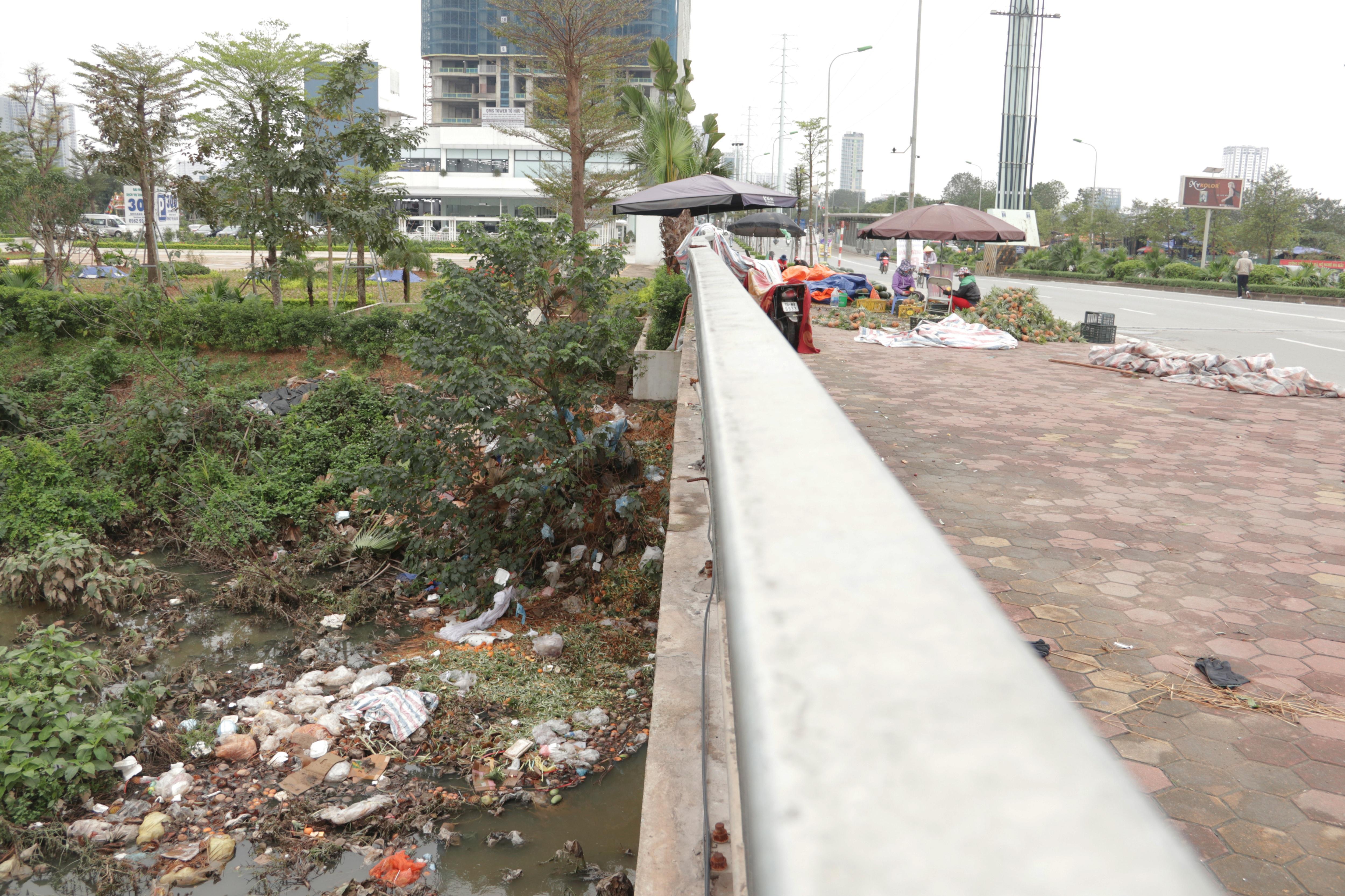 Hà Nội: Lấy mác giải cứu nông sản để chiếm vỉa hè nhiều tuyến phố - 9