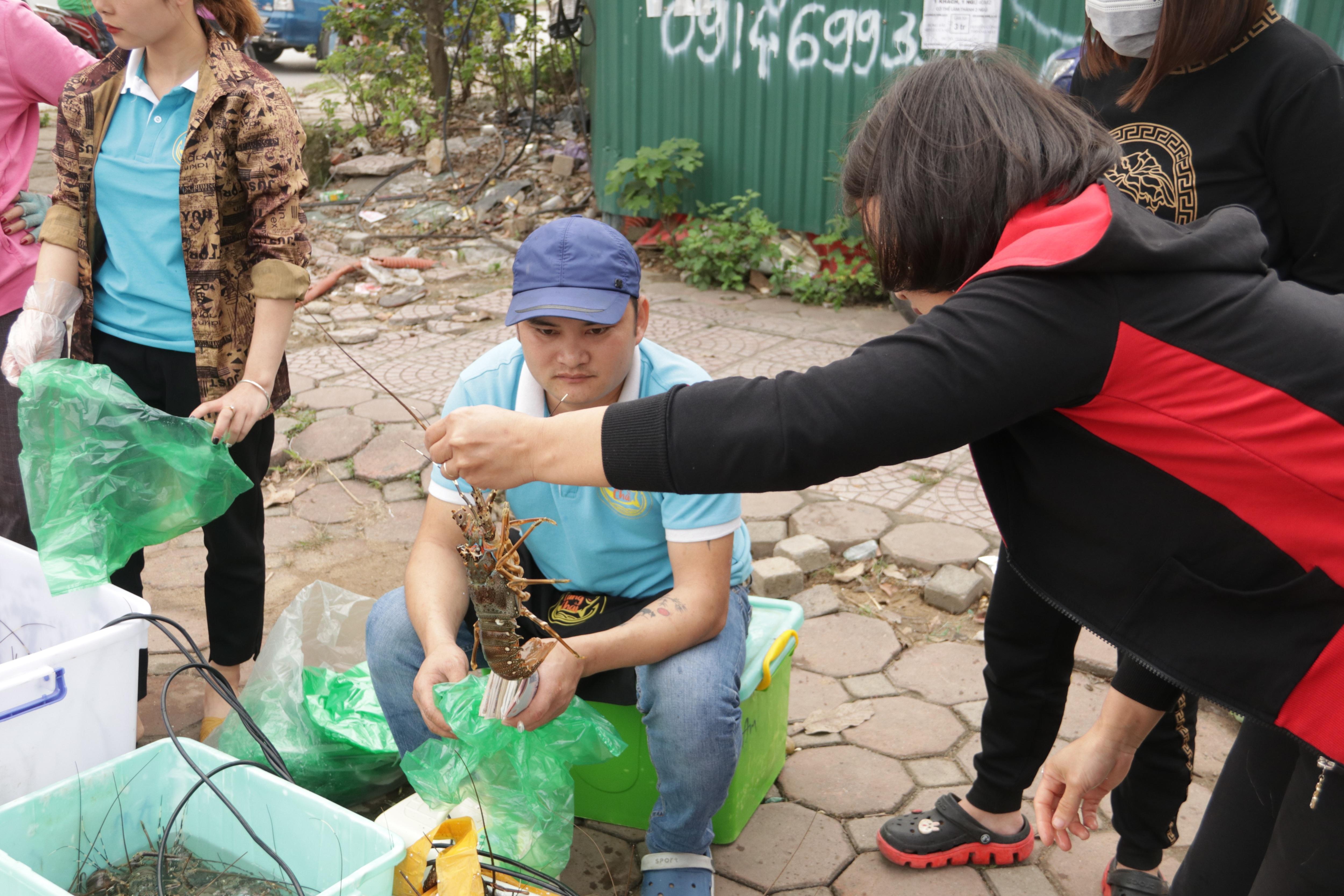 Hà Nội: Lấy mác giải cứu nông sản để chiếm vỉa hè nhiều tuyến phố - 19