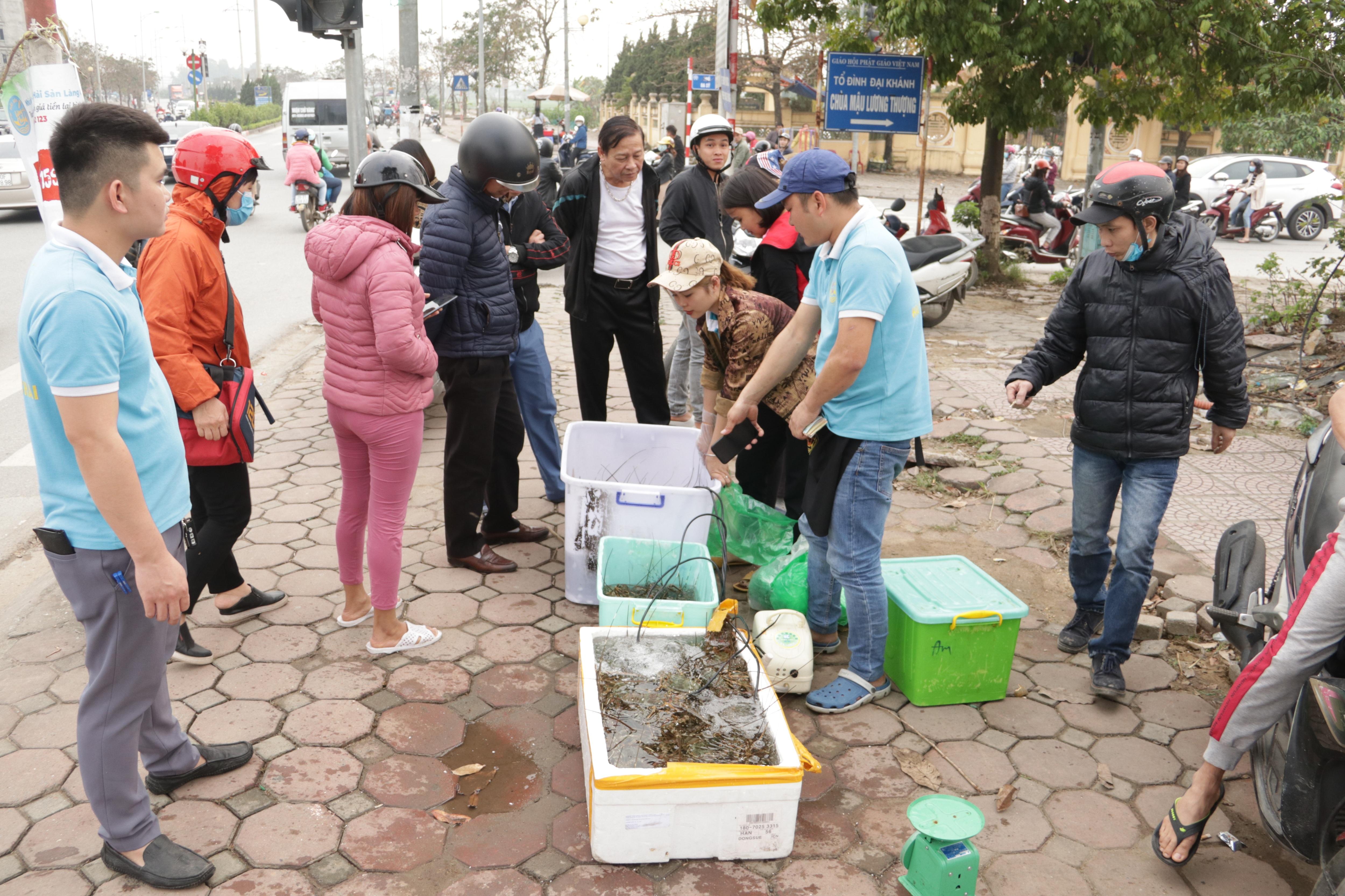 Hà Nội: Lấy mác giải cứu nông sản để chiếm vỉa hè nhiều tuyến phố - 17