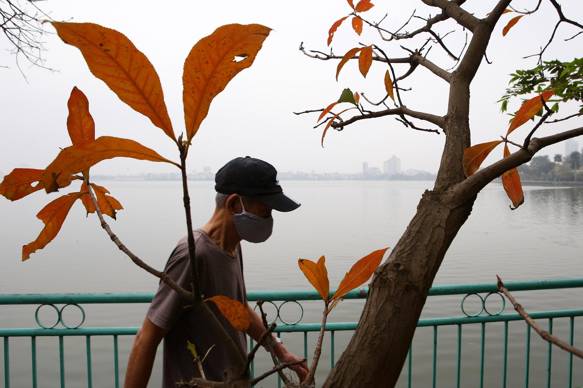 Hà Nội: Ngắm hồ Tây đẹp lãng mạn vào mùa cây thay lá - 7