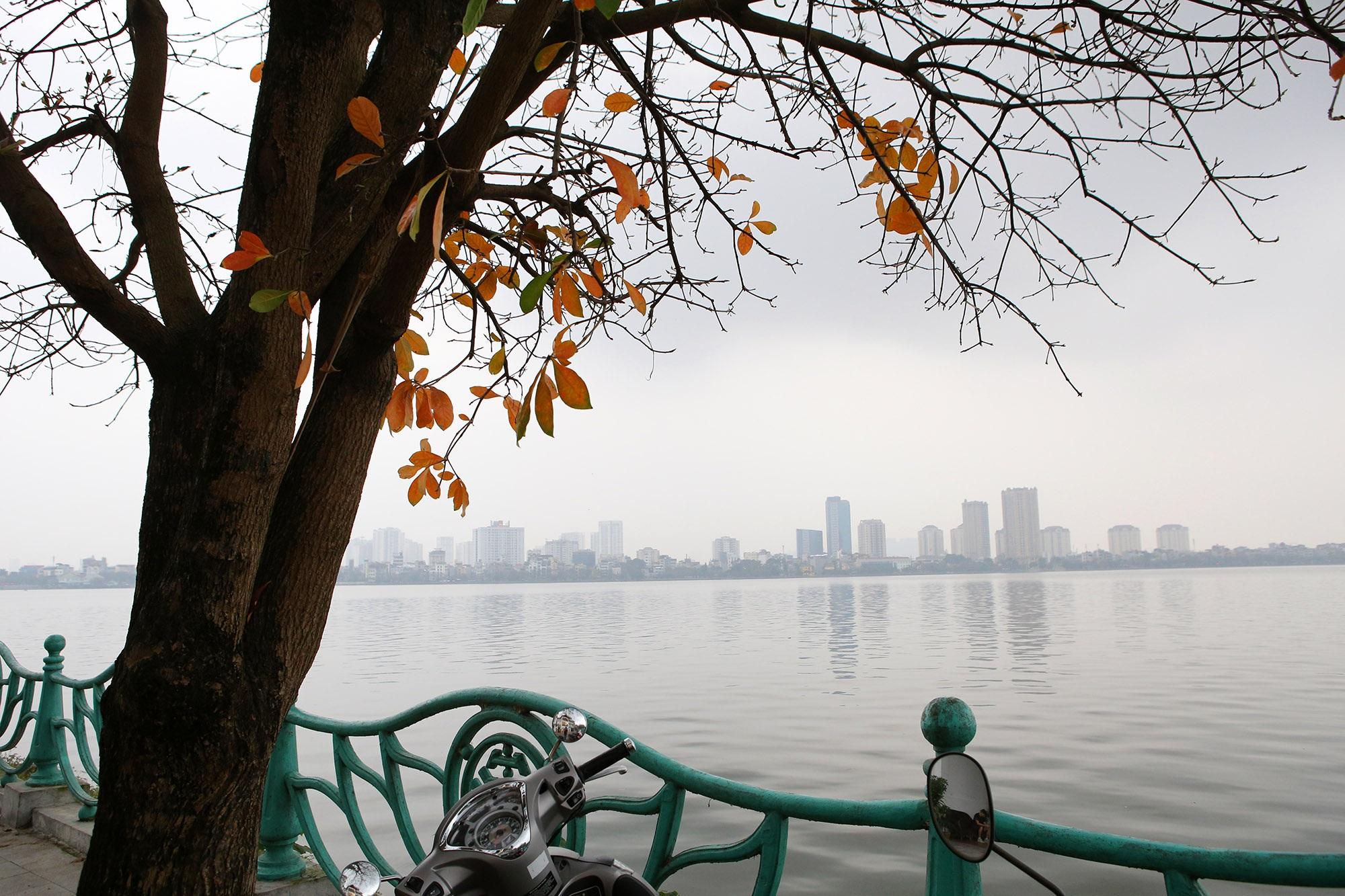 Hà Nội: Ngắm hồ Tây đẹp lãng mạn vào mùa cây thay lá - 9