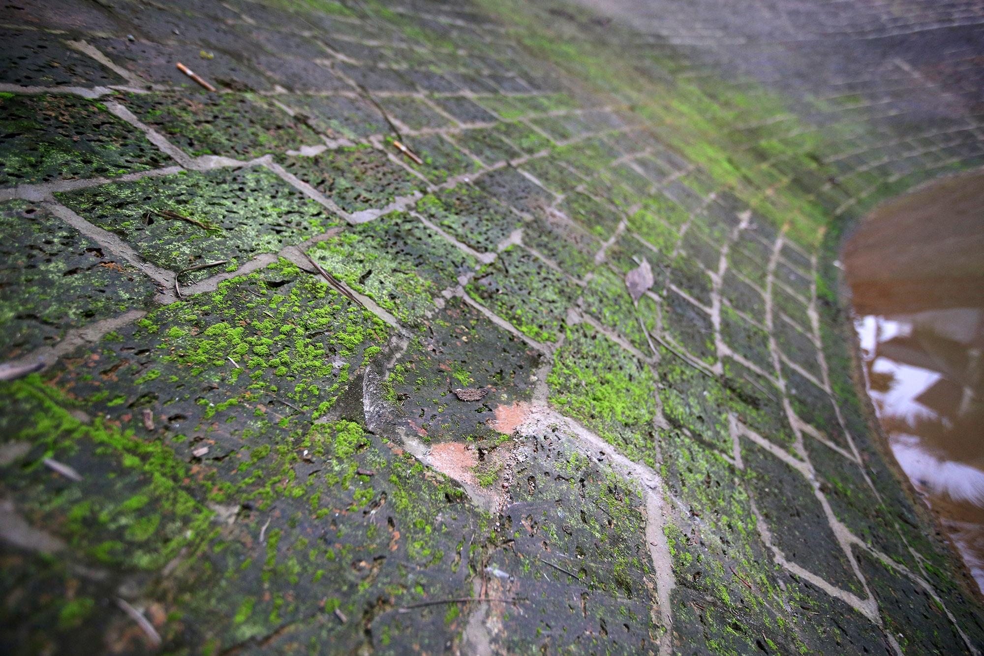 Giếng cổ khổng lồ, di sản có một không hai tại Hà Nội - 13
