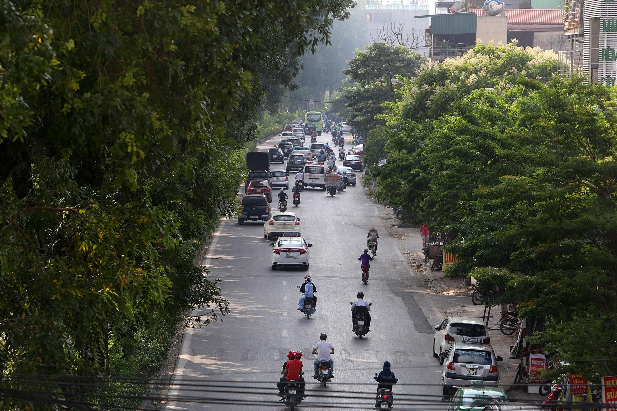 Những tuyến phố rợp bóng cây xanh làm đẹp Thủ đô - 1