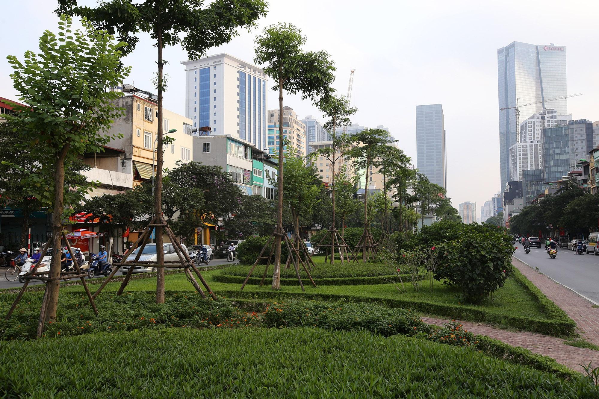 Những tuyến phố rợp bóng cây xanh làm đẹp Thủ đô - 14