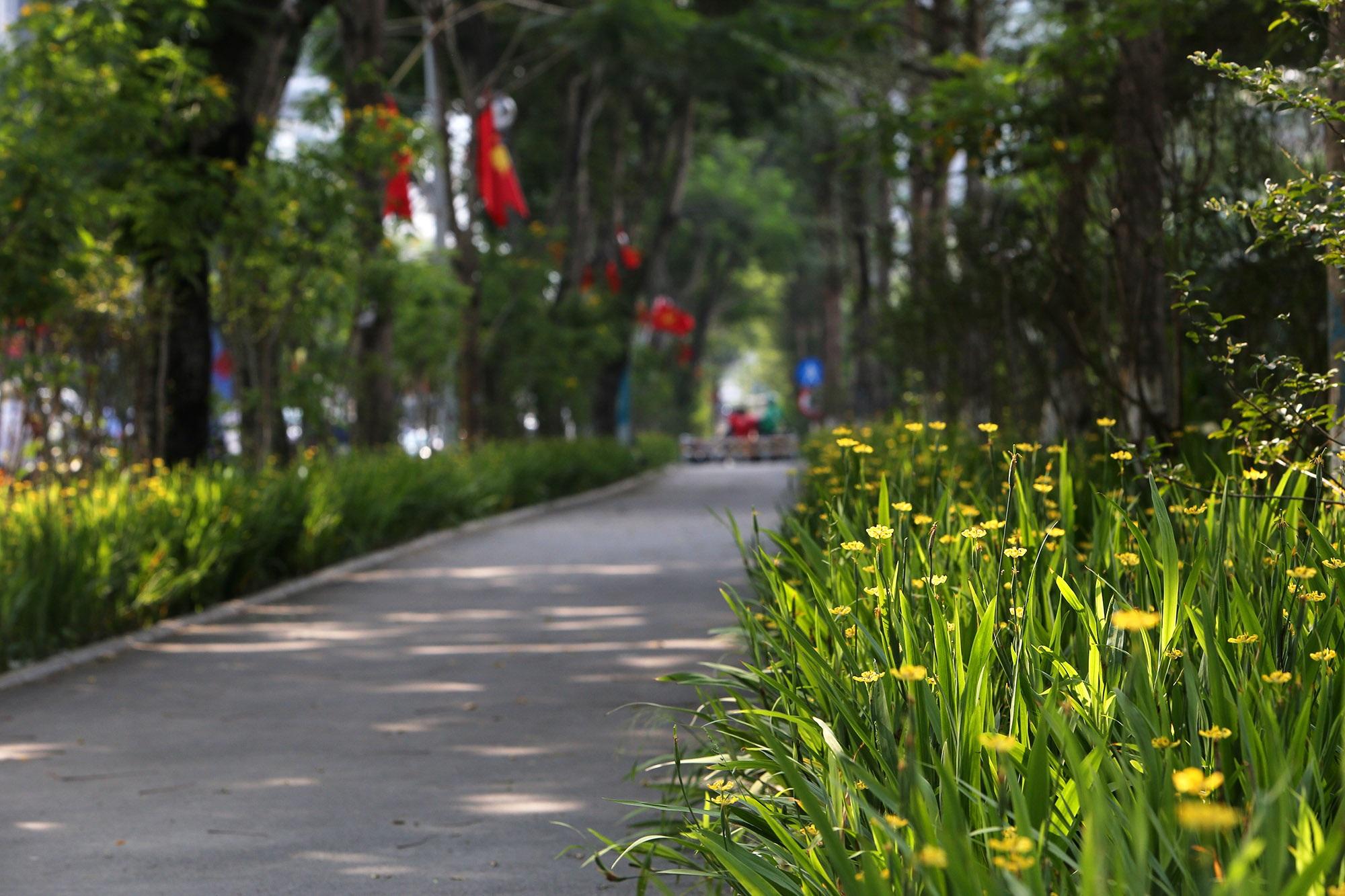 Những tuyến phố rợp bóng cây xanh làm đẹp Thủ đô - 6