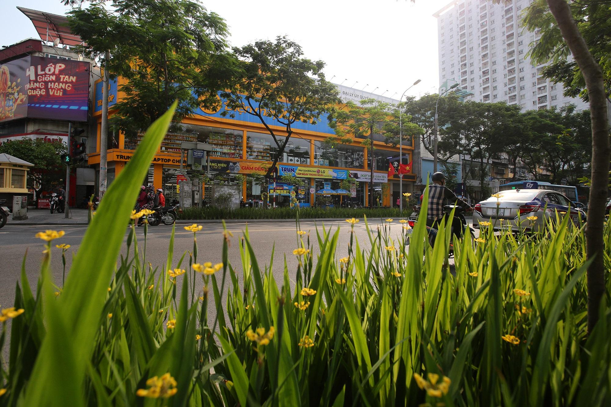 Những tuyến phố rợp bóng cây xanh làm đẹp Thủ đô - 7