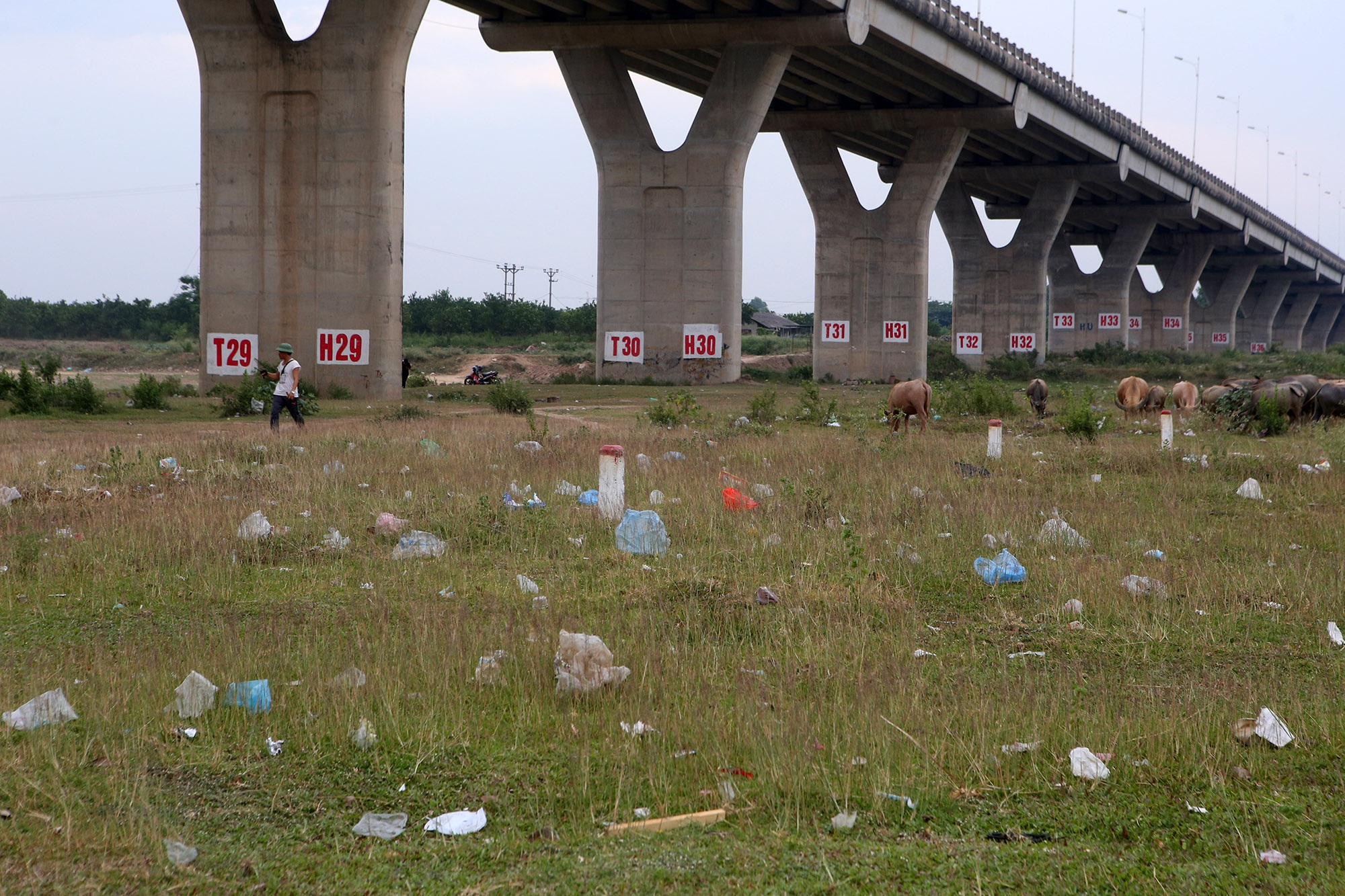 Xả rác tràn ngập bãi tự nhiên ven sông Hồng - 6