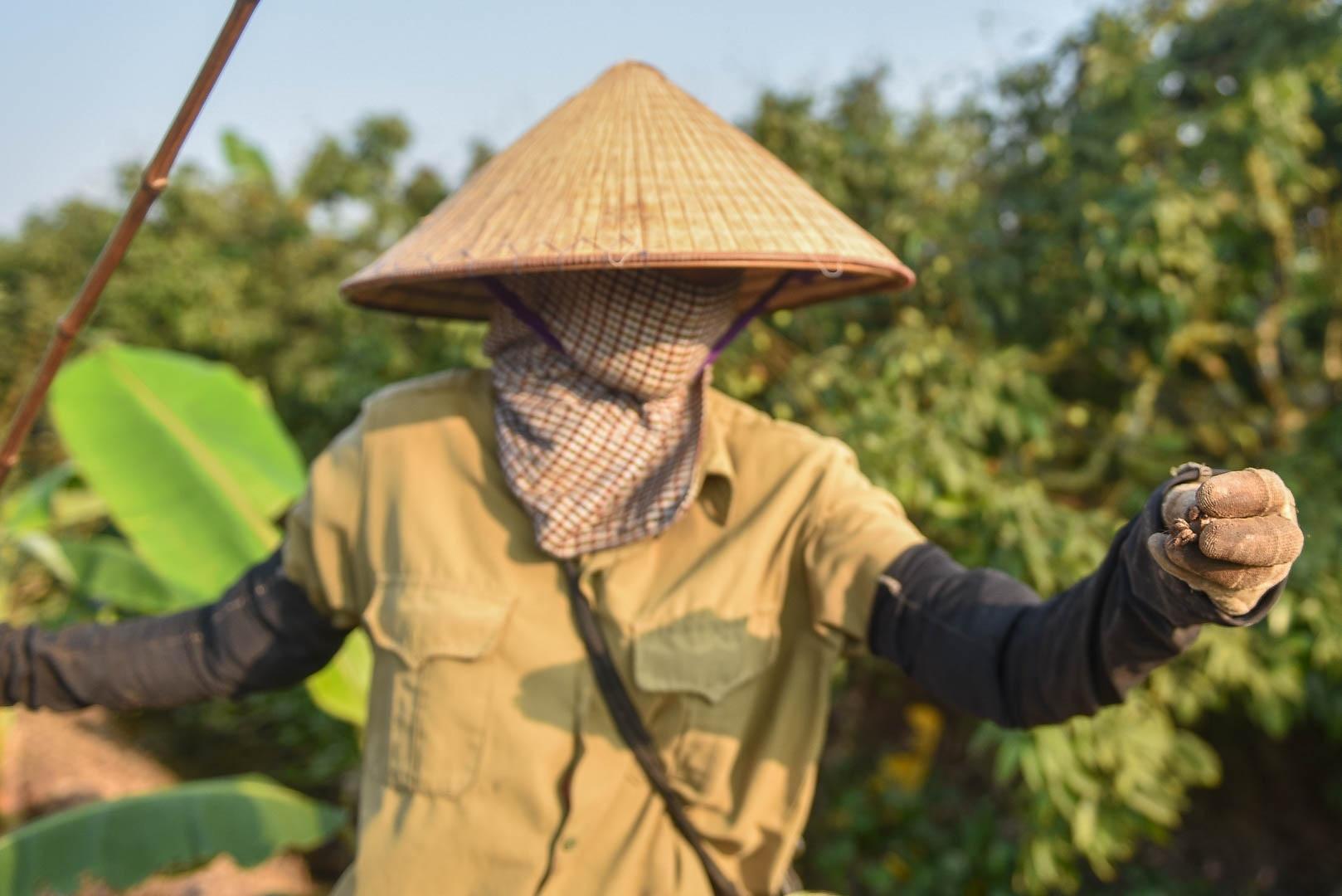Câu con lộc trời cho: nông dân Hải Dương kiếm nửa triệu đồng mỗi ngày - 3