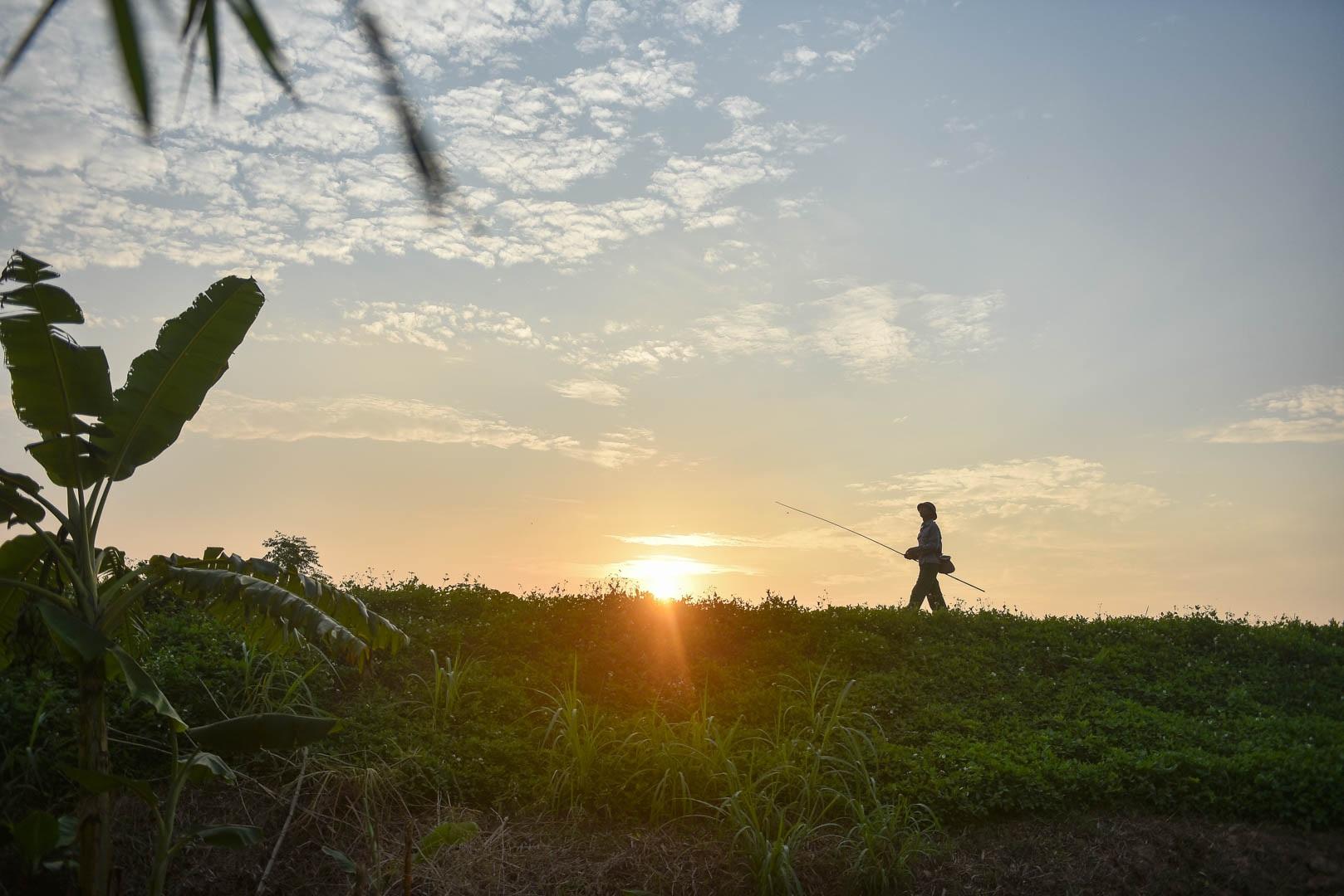 Câu con lộc trời cho: nông dân Hải Dương kiếm nửa triệu đồng mỗi ngày - 19