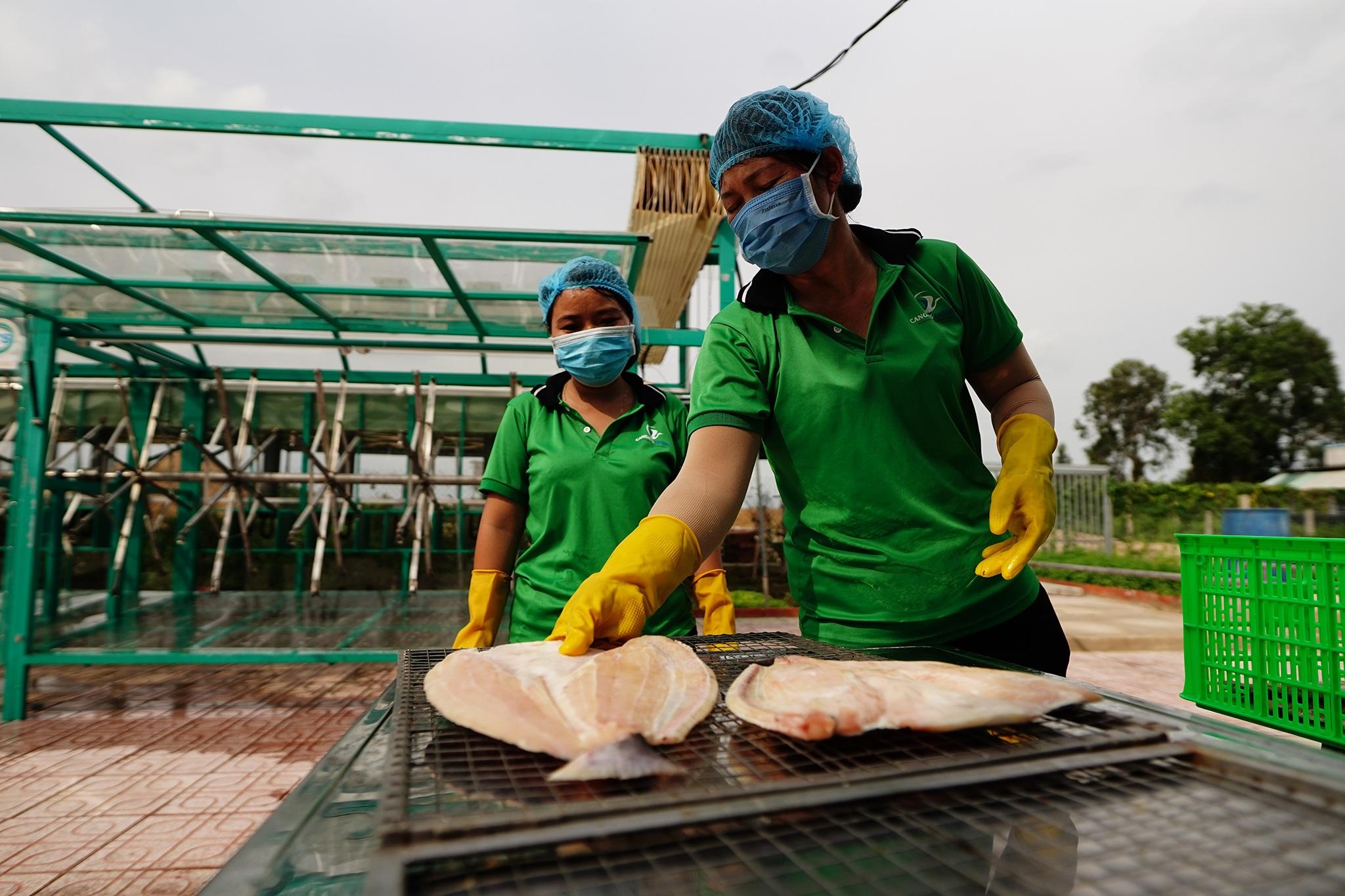 Nông dân đổi đời, thu tiền tỉ mỗi năm nhờ nuôi cá trời cho - 2