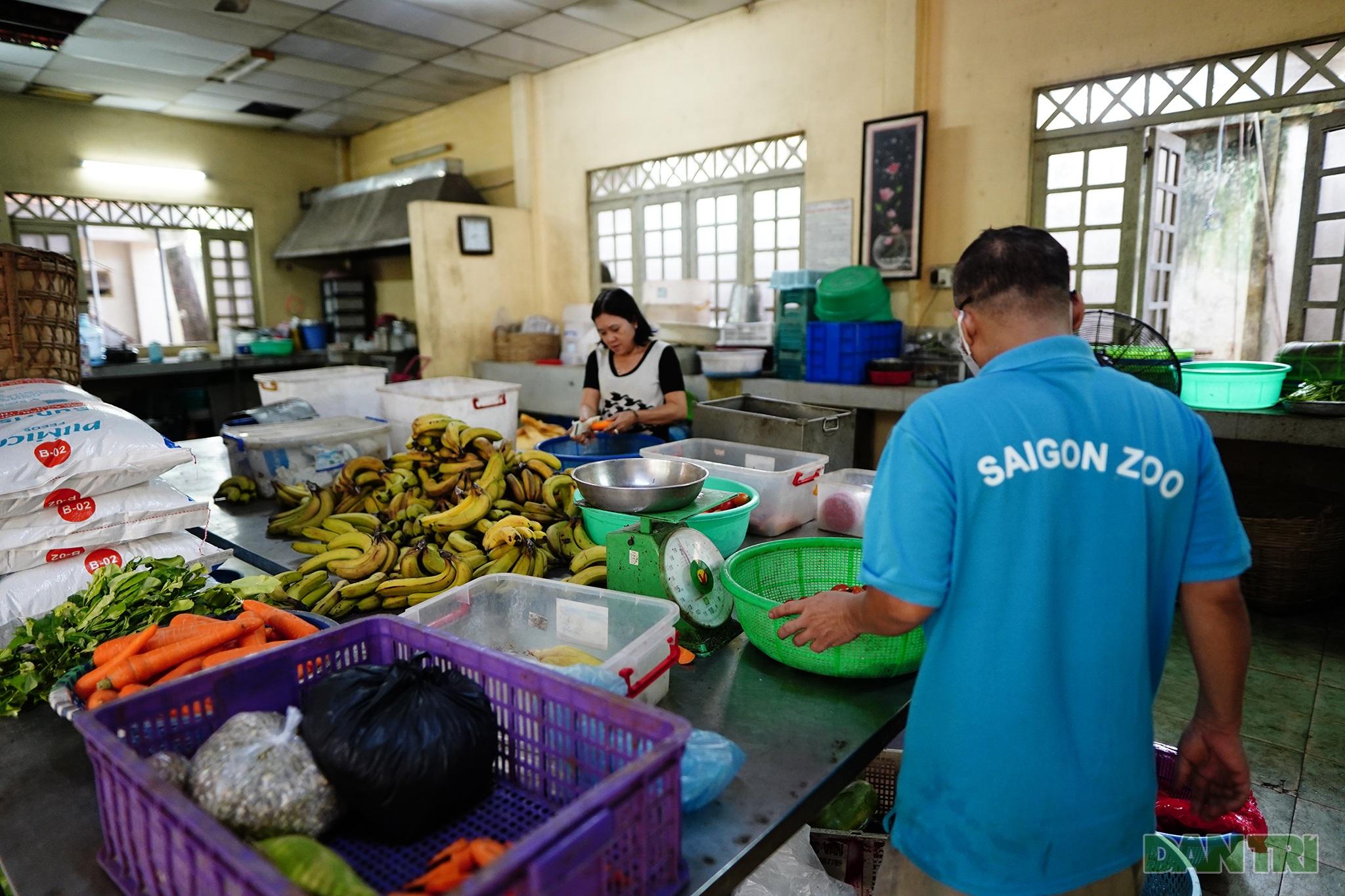 Doanh thu giảm 95%, nhân viên giảm lương để đảm bảo phần ăn cho thú - 2
