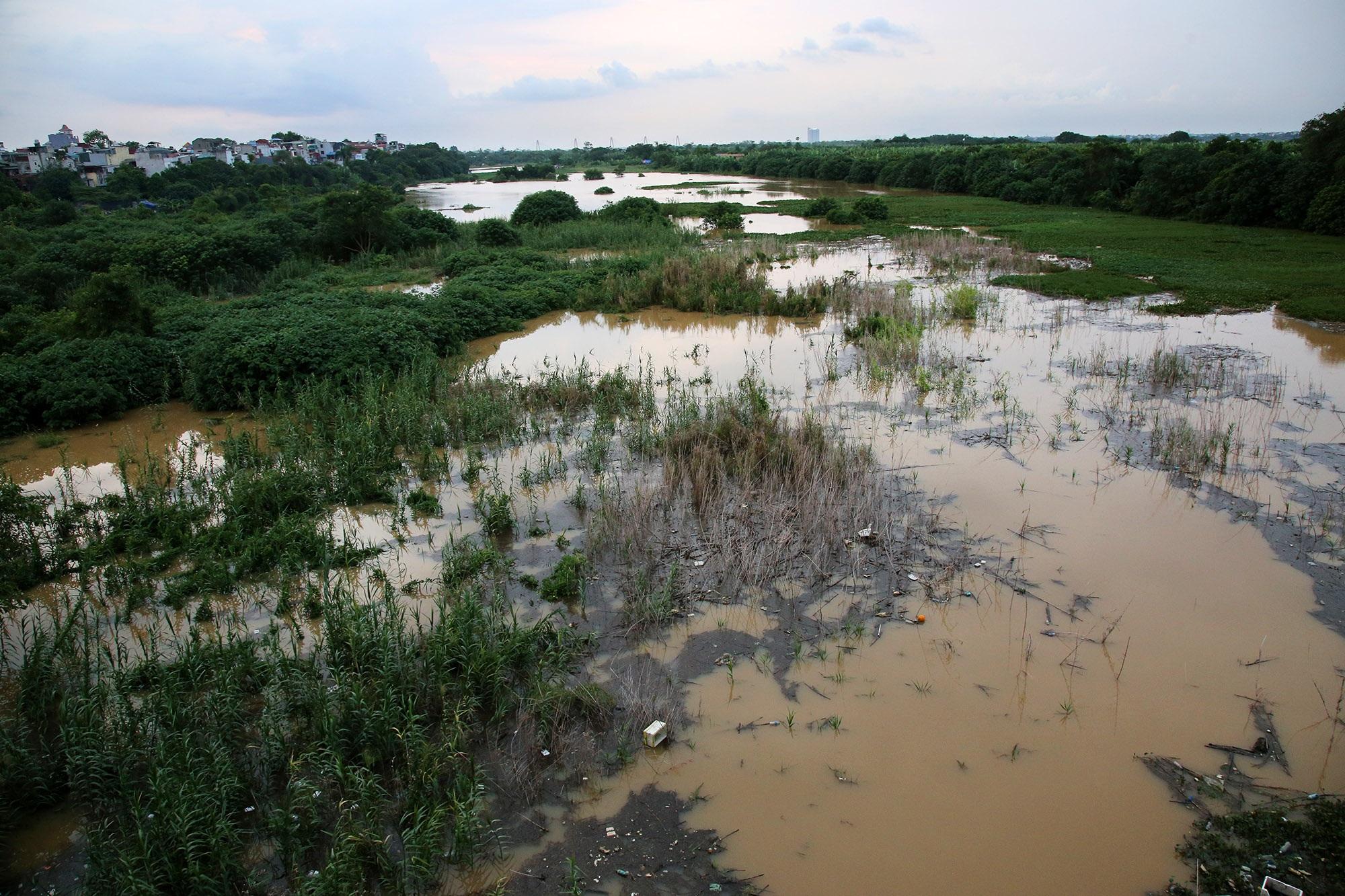 Cảnh nước dâng cao, chảy cuồn cuộn trên sông Hồng, sông Đuống - 14