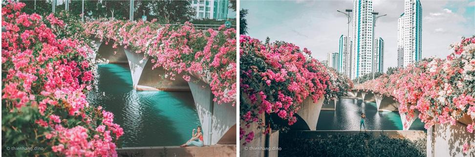 Ngắm thành phố xanh Ecopark đẹp mê mẩn trong mùa hoa giấy - 6