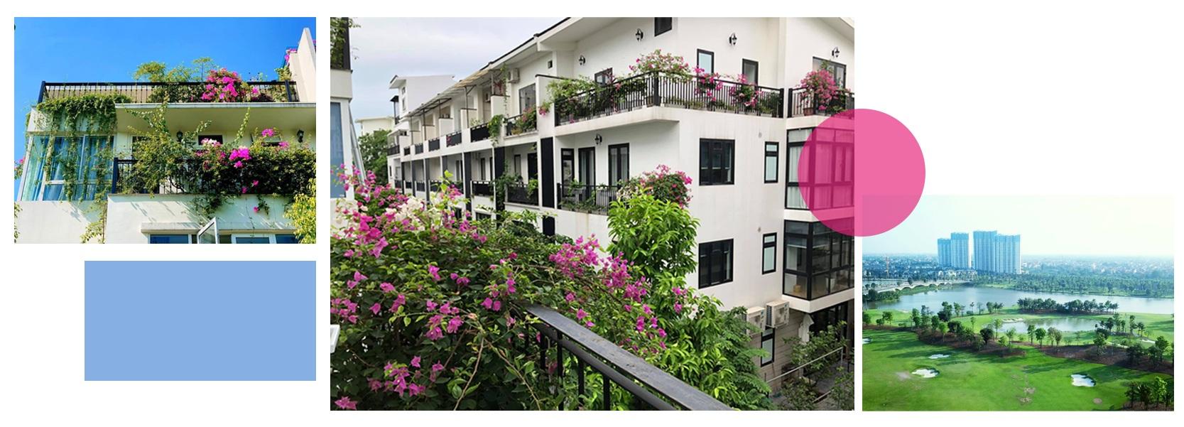 Ngắm thành phố xanh Ecopark đẹp mê mẩn trong mùa hoa giấy - 9