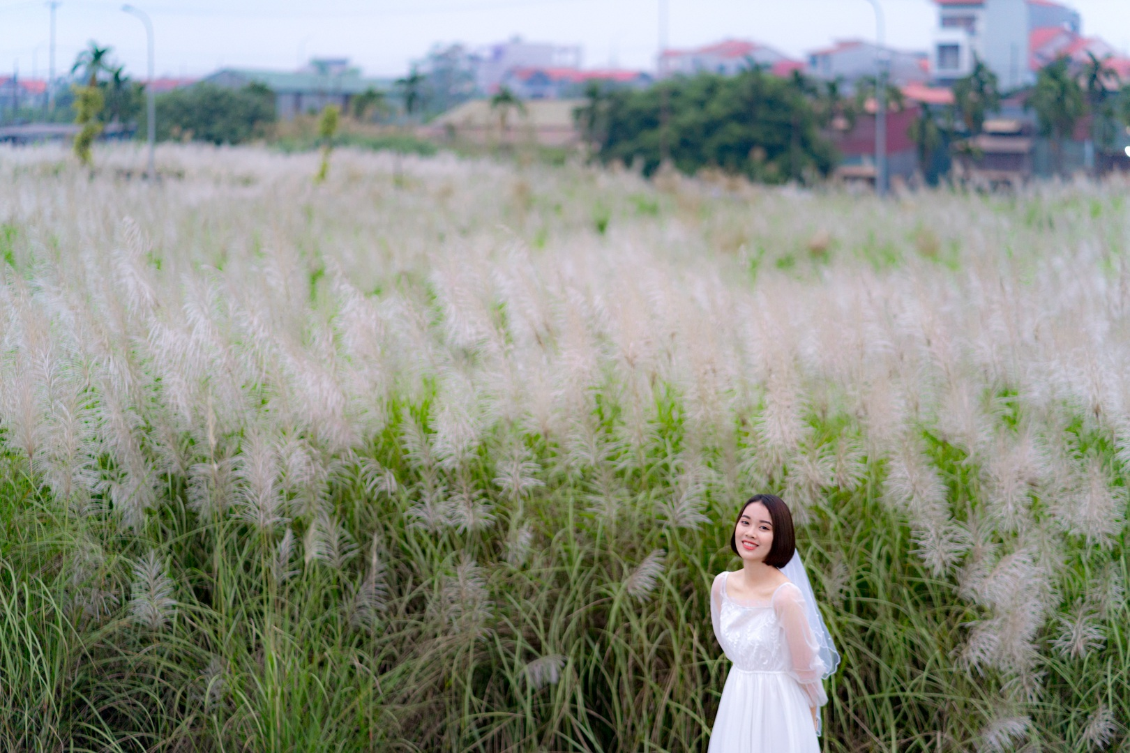 Bãi cỏ lau trắng tuyệt đẹp hút giới trẻ Hà thành tới sống ảo - 5