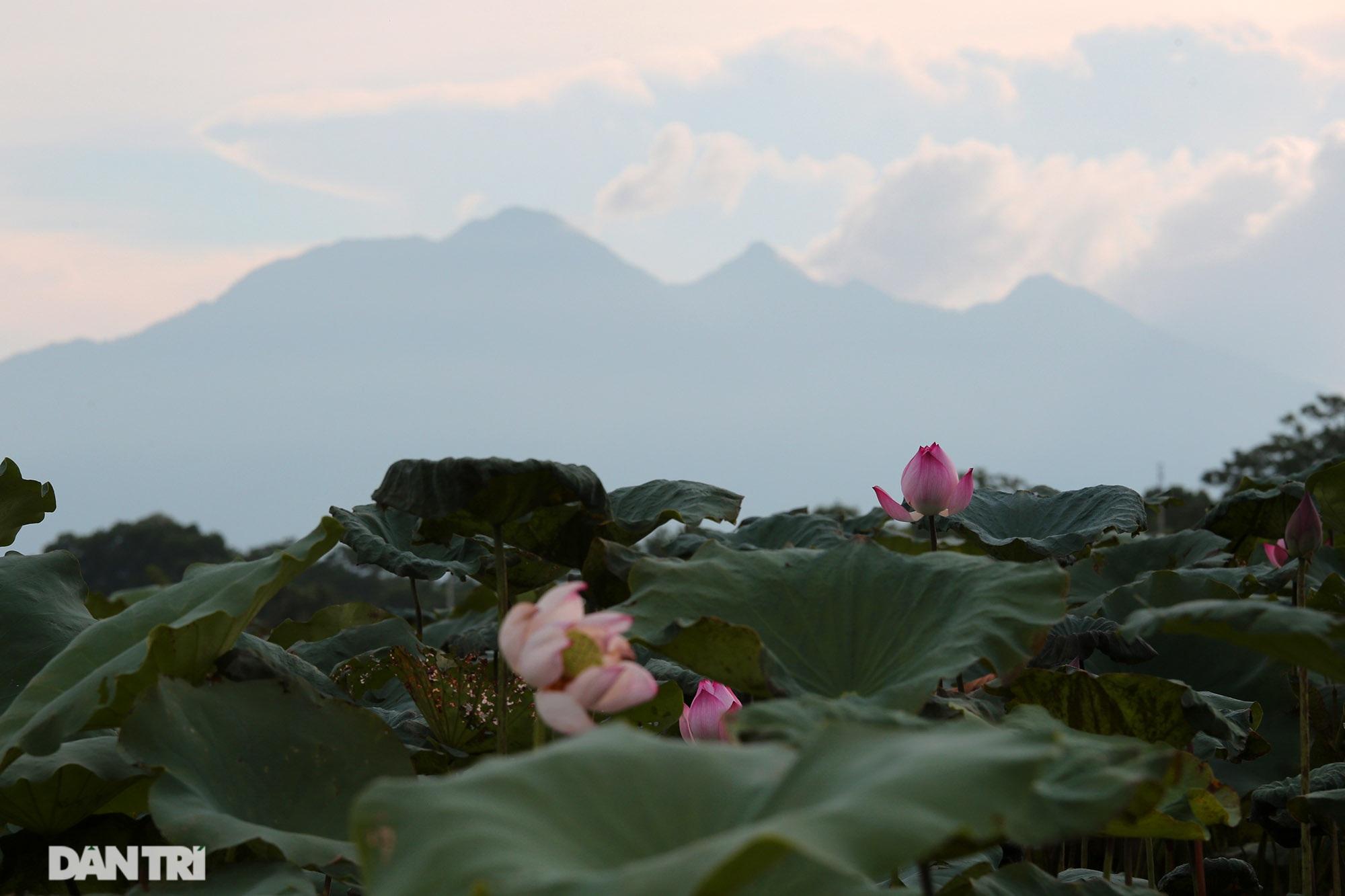 Núi thiêng gần Hà Nội đẹp mê mải nhìn từ muôn phương tám hướng - 6