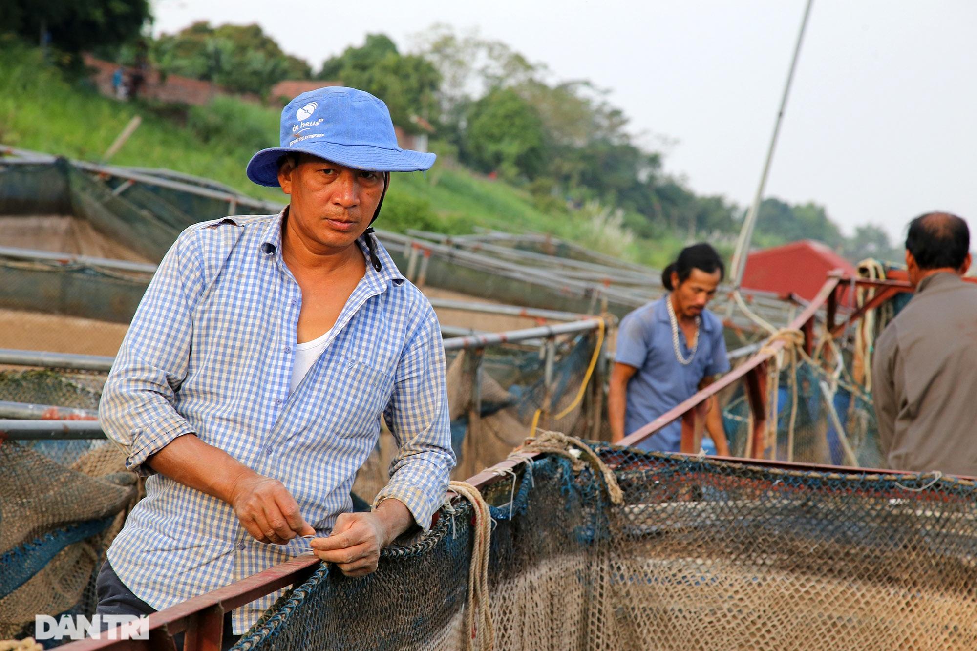 Sông Đà cạn trơ đáy, nông dân hối hả bơm cát cứu cá - 13