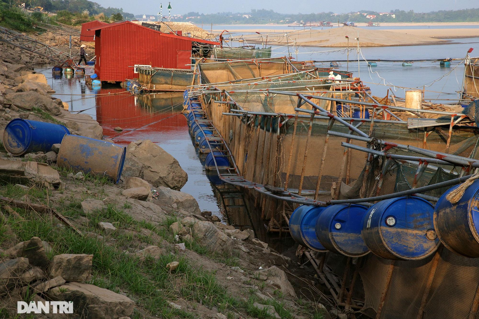 Sông Đà cạn trơ đáy, nông dân hối hả bơm cát cứu cá - 6