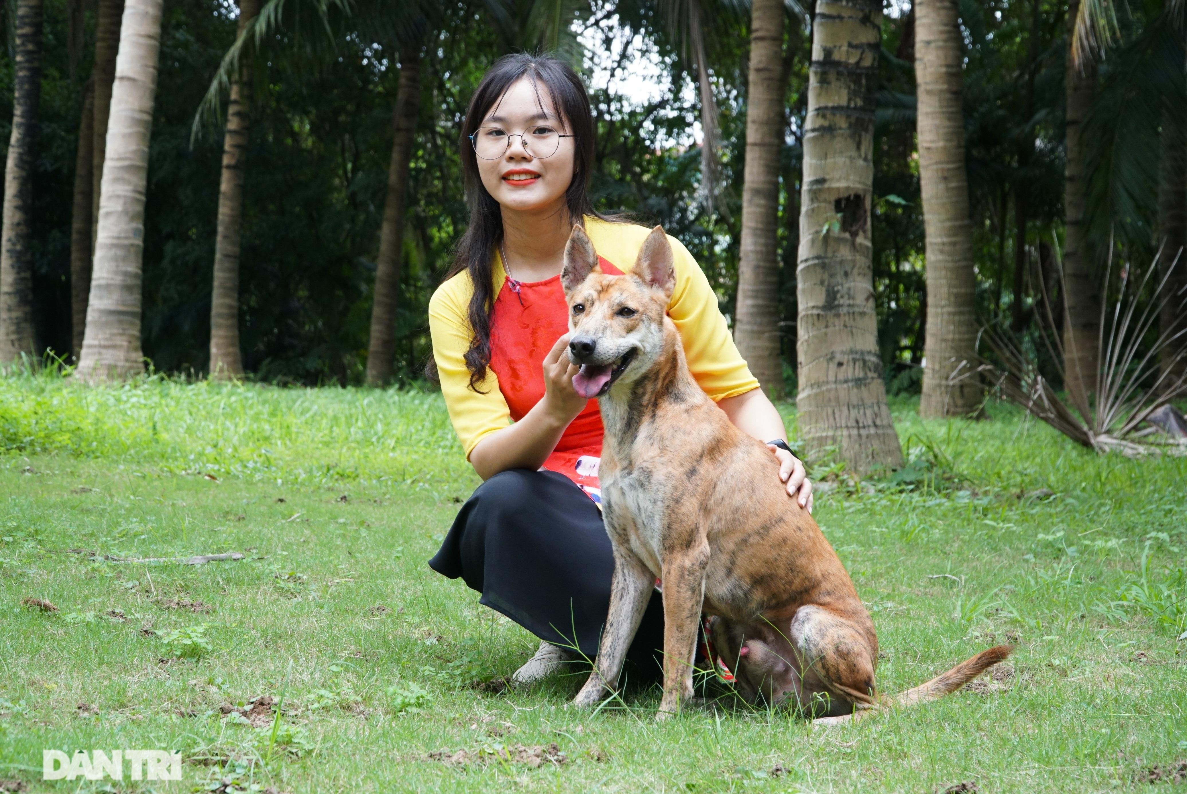 Những chú chó Phú Quốc có giá hàng trăm triệu đồng ở Hà Nội - 7