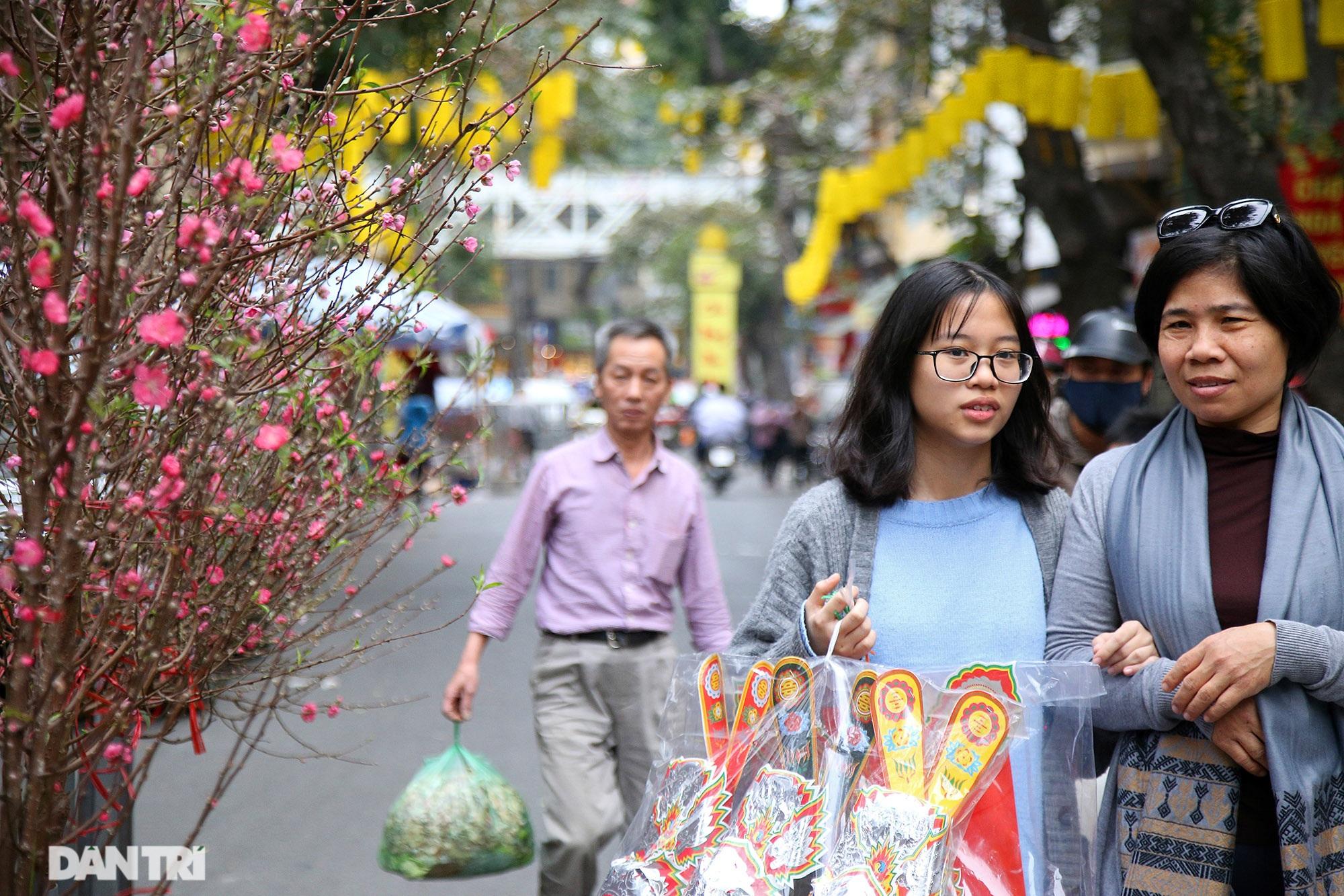 Chợ hoa Hàng Lược bắt đầu khoe sắc đón người dân sắm Tết - 1