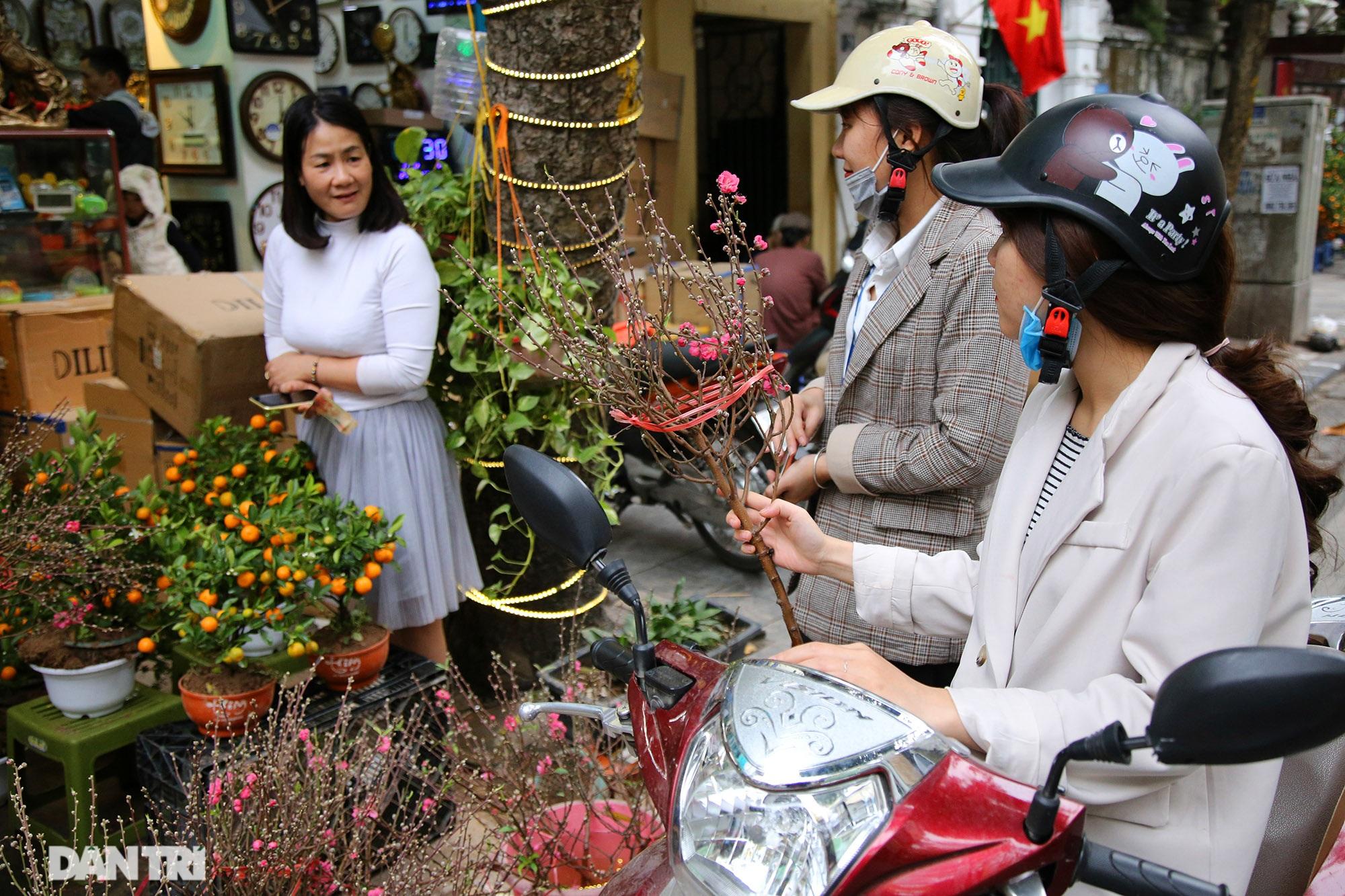 Chợ hoa Hàng Lược bắt đầu khoe sắc đón người dân sắm Tết - 5