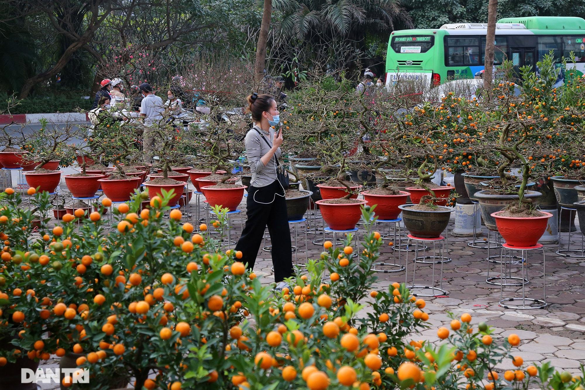 Chợ hoa bày bán trên đường phố Hà Nội đông khách bất chấp dịch Covid-19 - 11