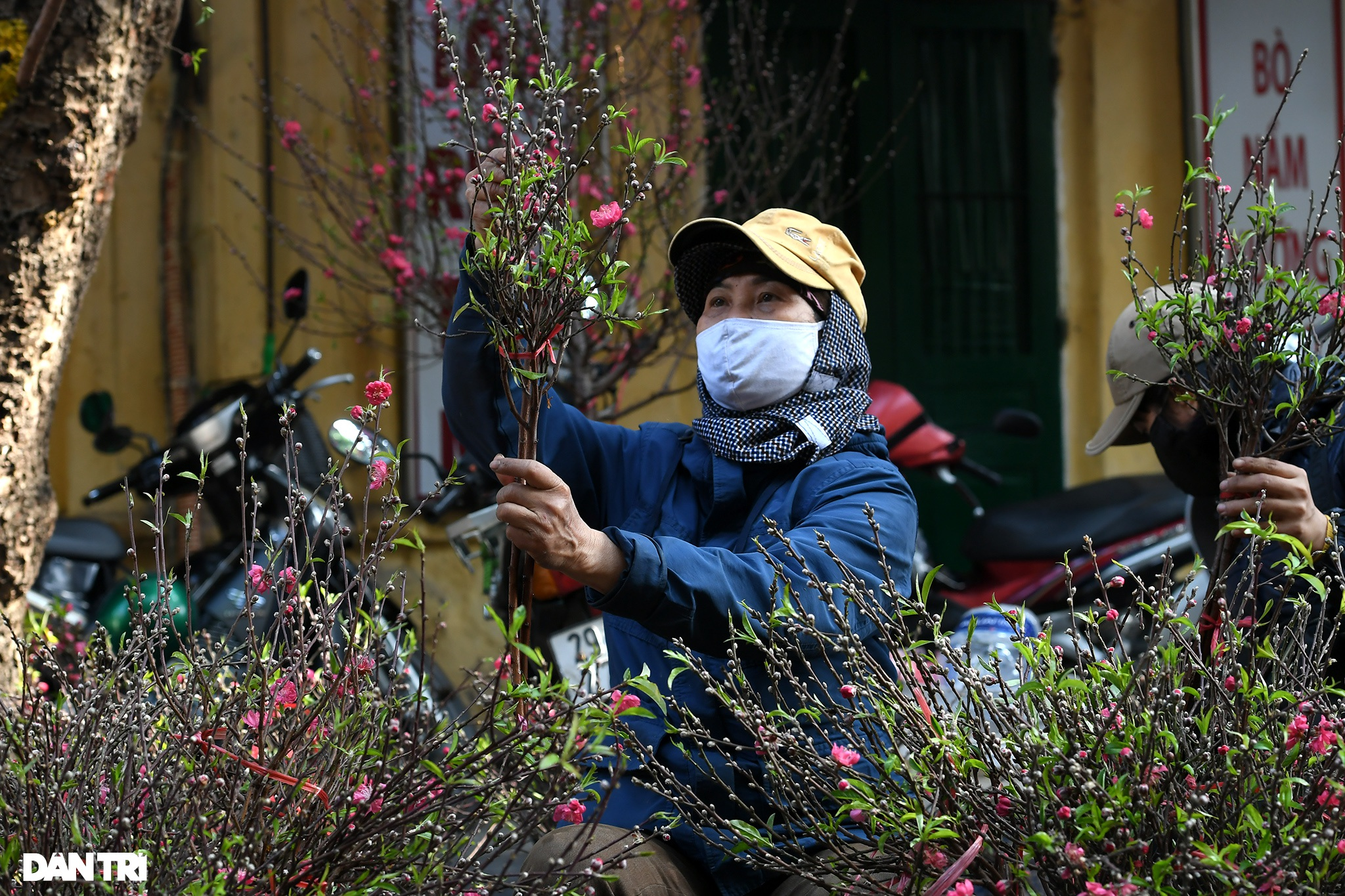 The sunshine came back and filled the streets of Hanoi on the 29th of Tet - 5