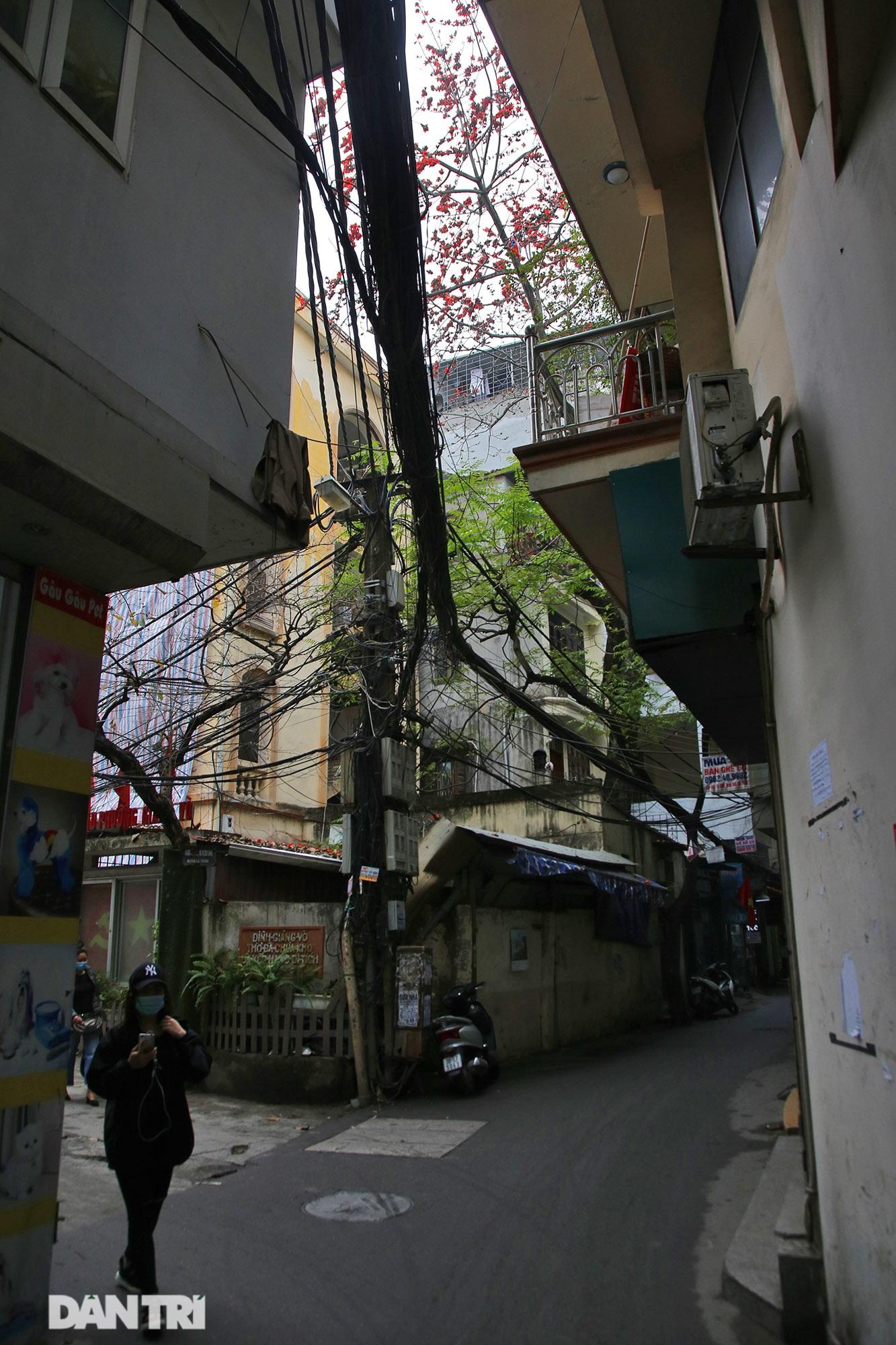 Mùa hoa gạo trong phố - 10
