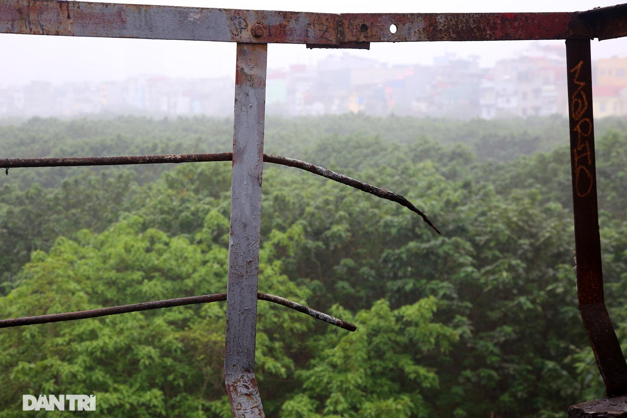 Cầu Long Biên như bị bỏ rơi, gỉ sét xuống cấp nghiêm trọng - 5