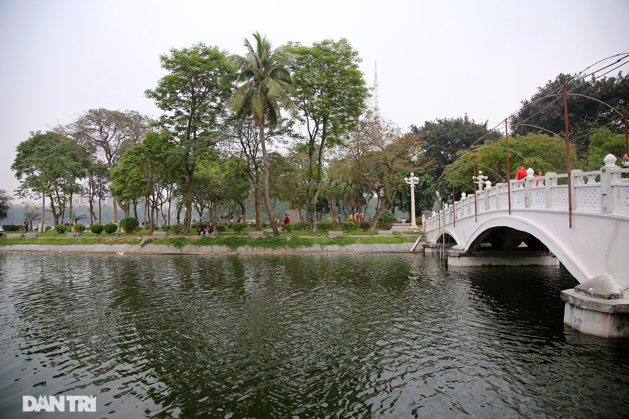 Little-known things about the largest park in Hanoi are about to turn 60 years old - 7