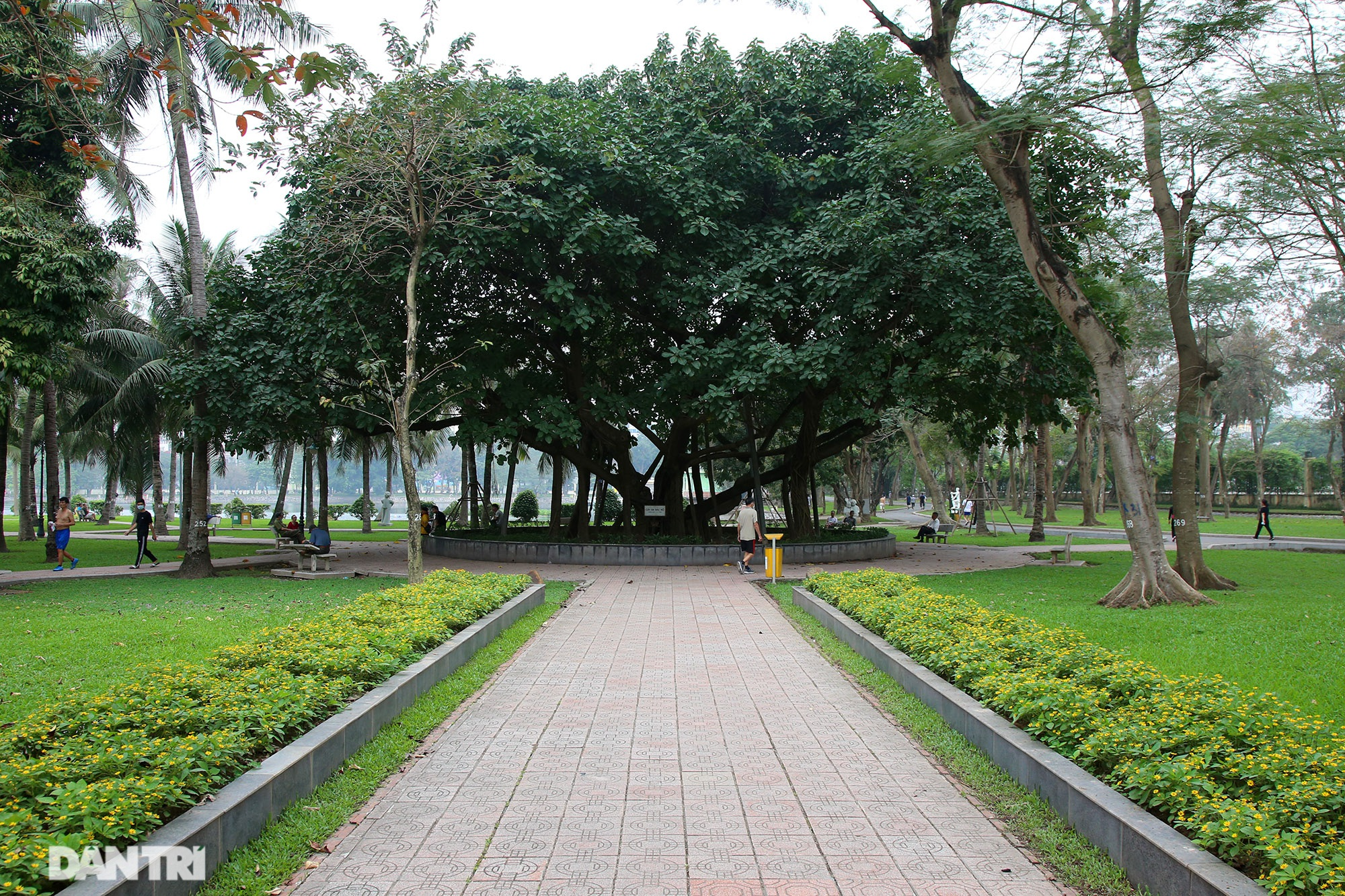 Little-known things about the largest park in Hanoi are about to turn 60 years old - 11