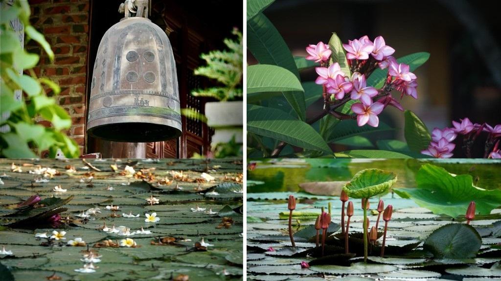 Nét bình dị nơi một trong 10 làng cổ đẹp nhất Việt Nam - 13