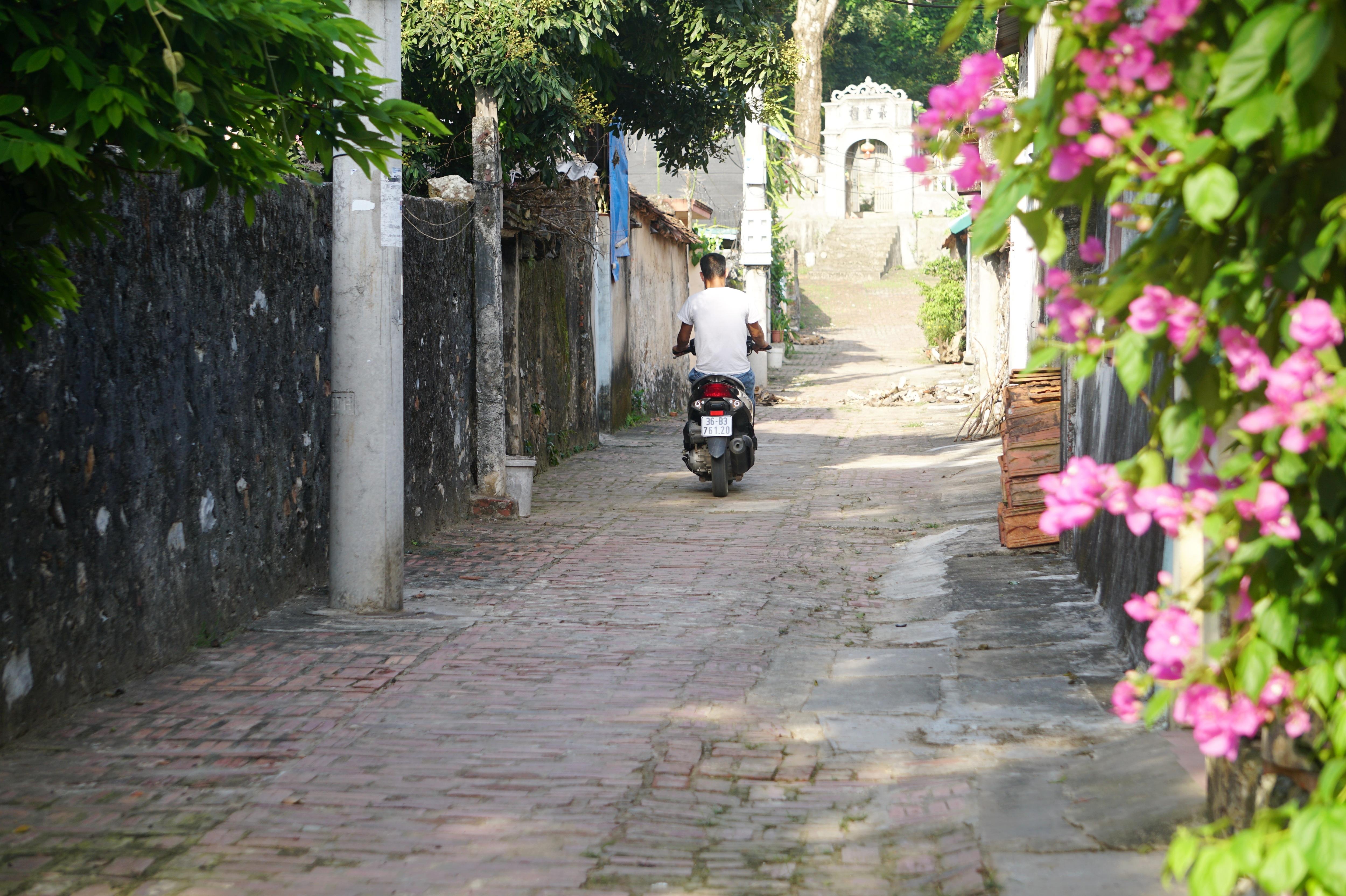 Nét bình dị nơi một trong 10 làng cổ đẹp nhất Việt Nam - 3