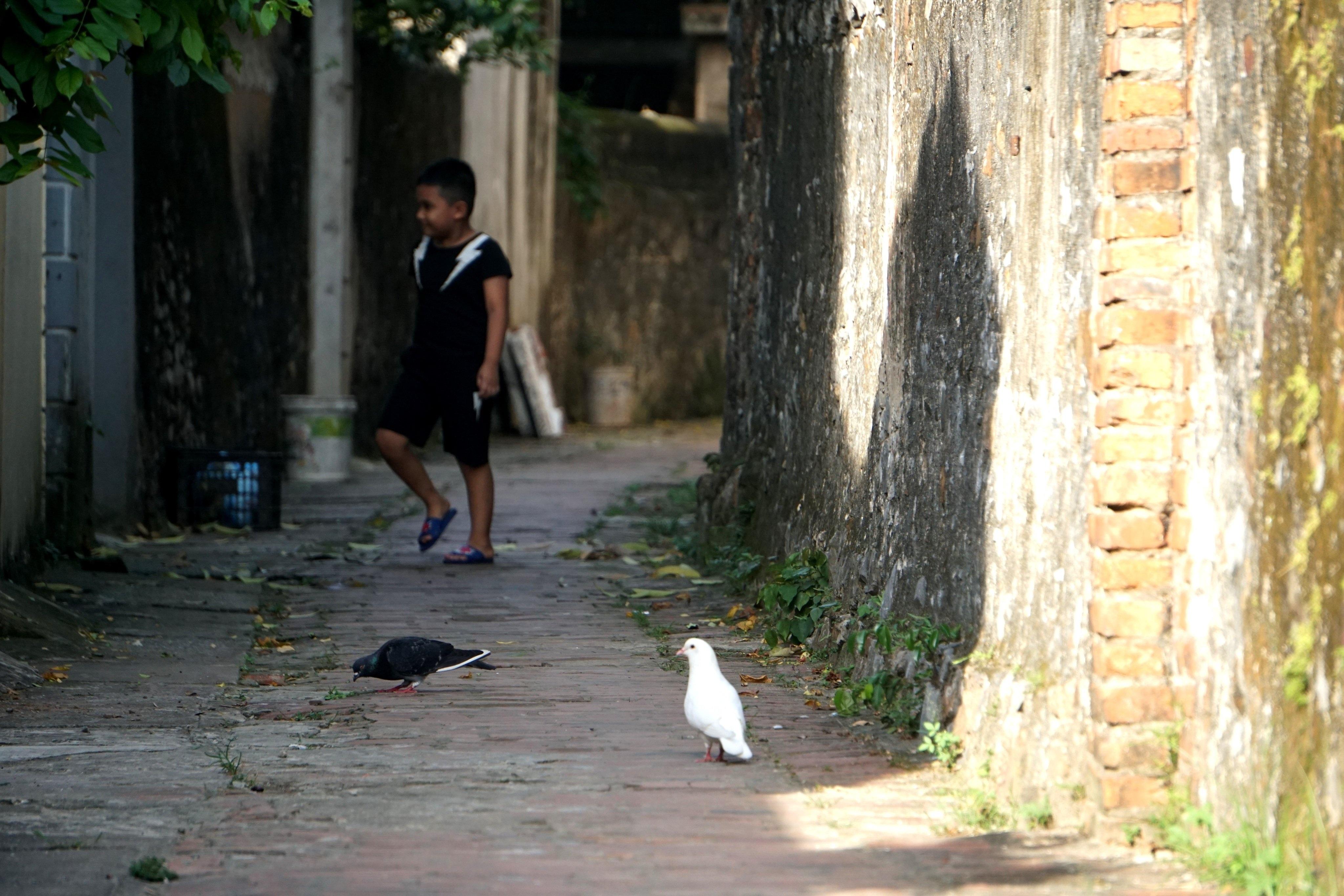 Nét bình dị nơi một trong 10 làng cổ đẹp nhất Việt Nam - 14