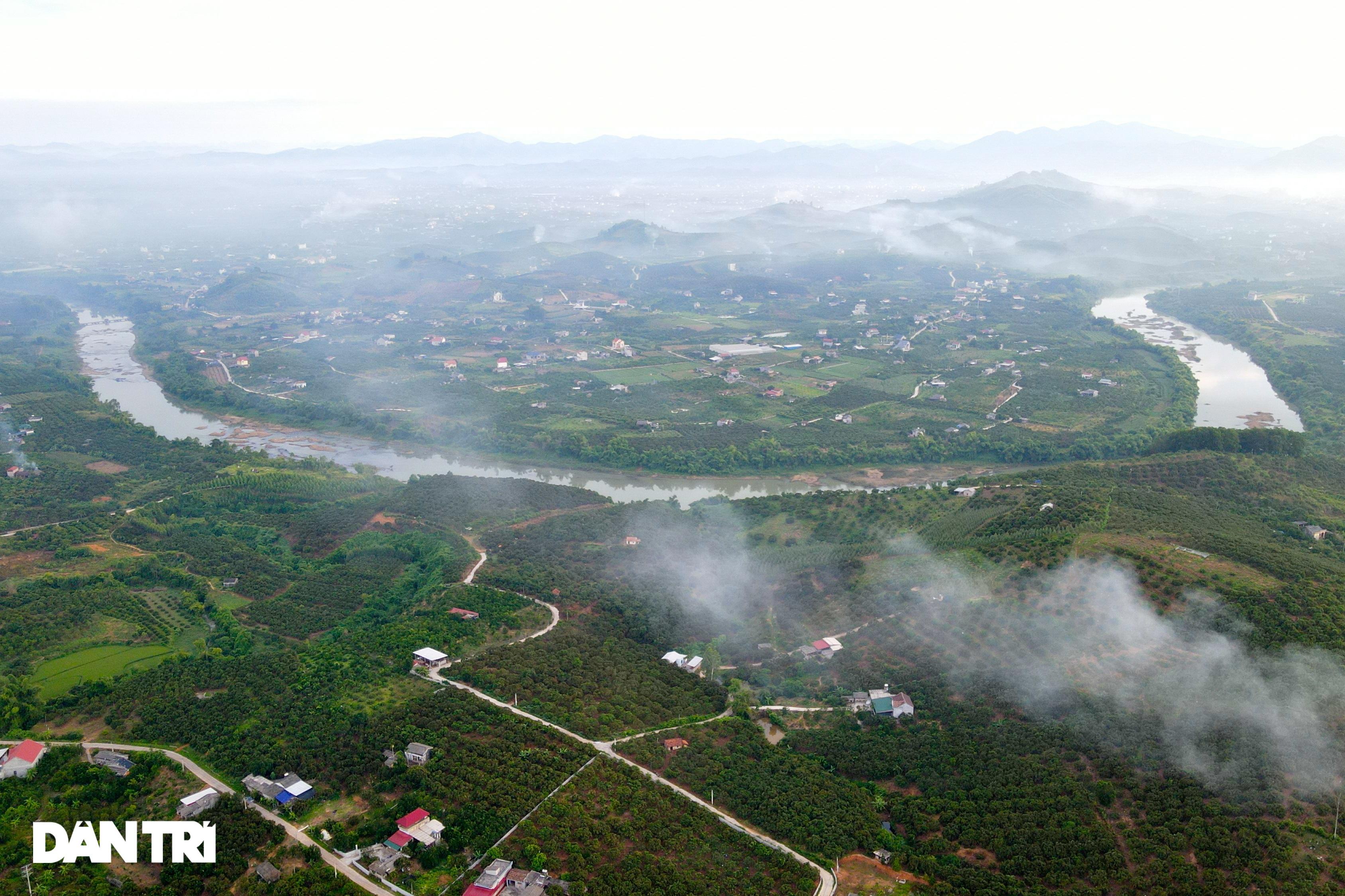 Bắc Giang: Xe chở vải thiều nối đuôi nhau dài hàng cây số ra các trạm cân - 1