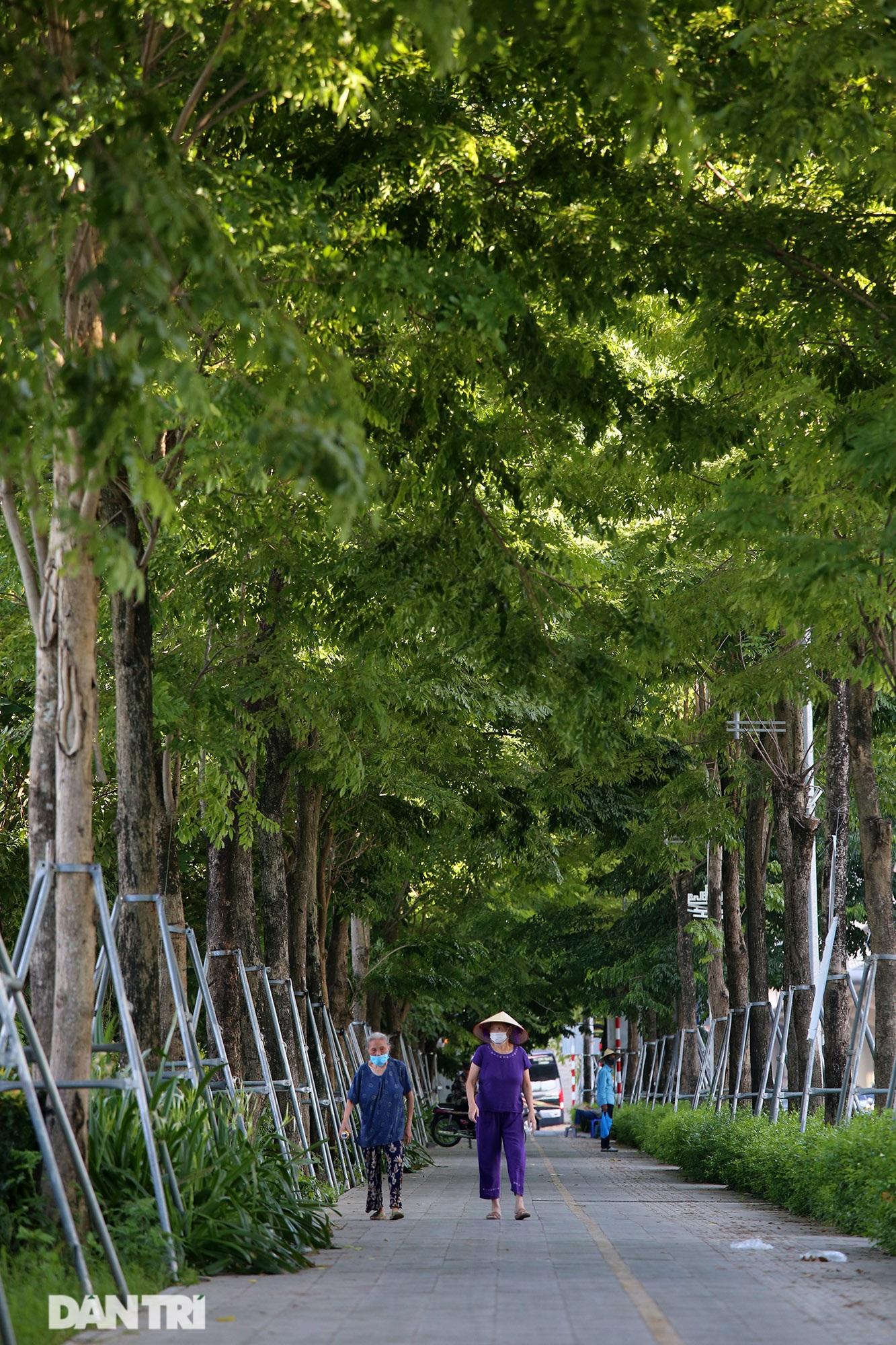 Con đường mát mẻ dài nhất Hà Nội giữa những ngày nắng nóng đỉnh điểm - 10