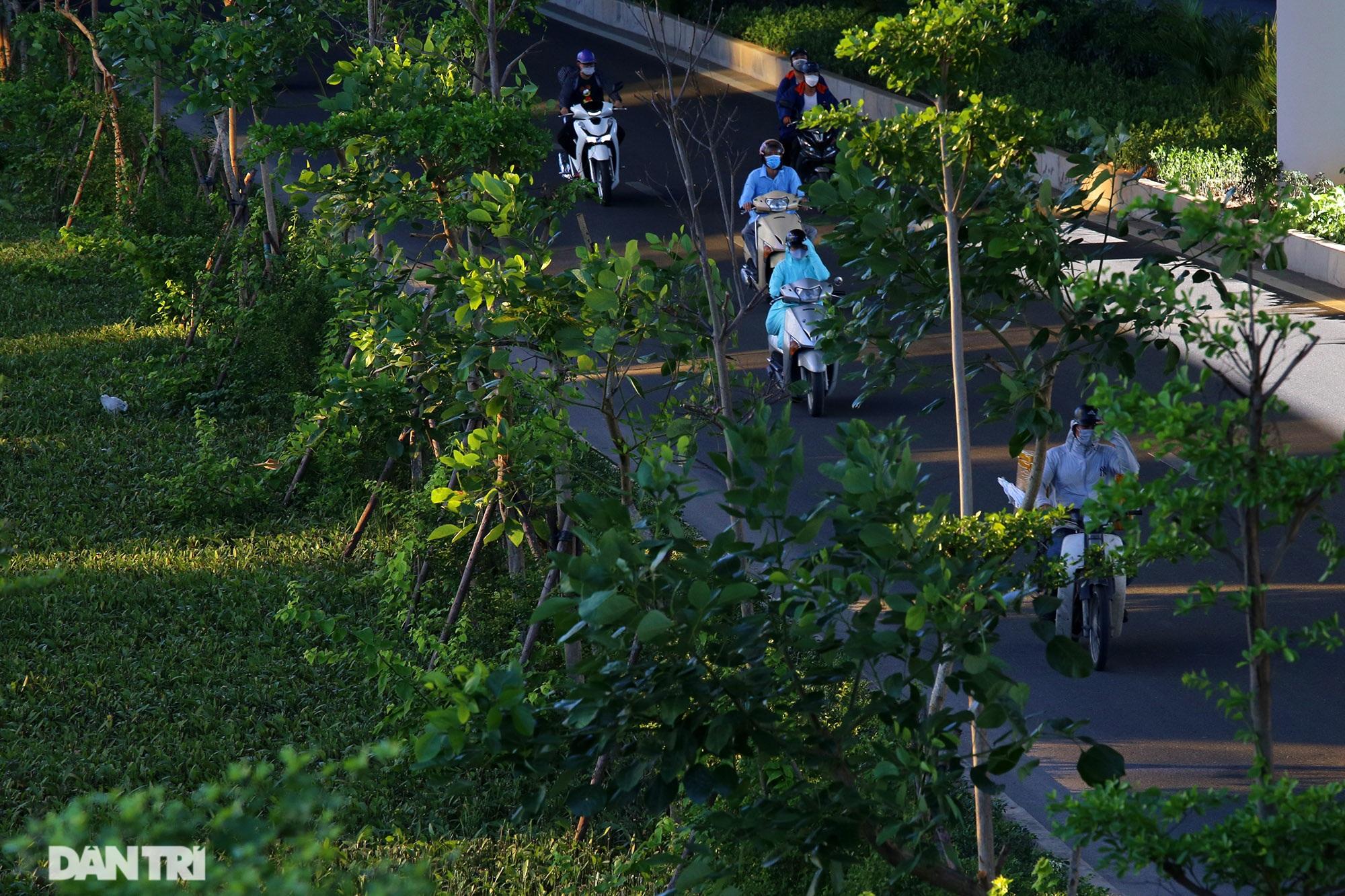 Con đường mát mẻ dài nhất Hà Nội giữa những ngày nắng nóng đỉnh điểm - 6