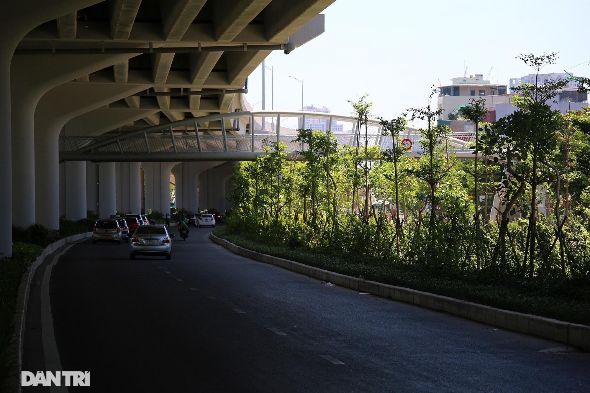 Con đường mát mẻ dài nhất Hà Nội giữa những ngày nắng nóng đỉnh điểm - 9