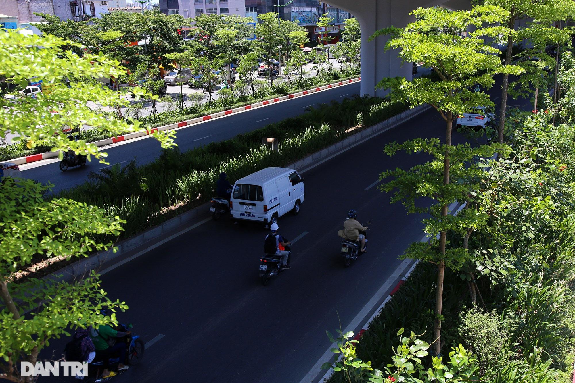 Con đường mát mẻ dài nhất Hà Nội giữa những ngày nắng nóng đỉnh điểm - 5