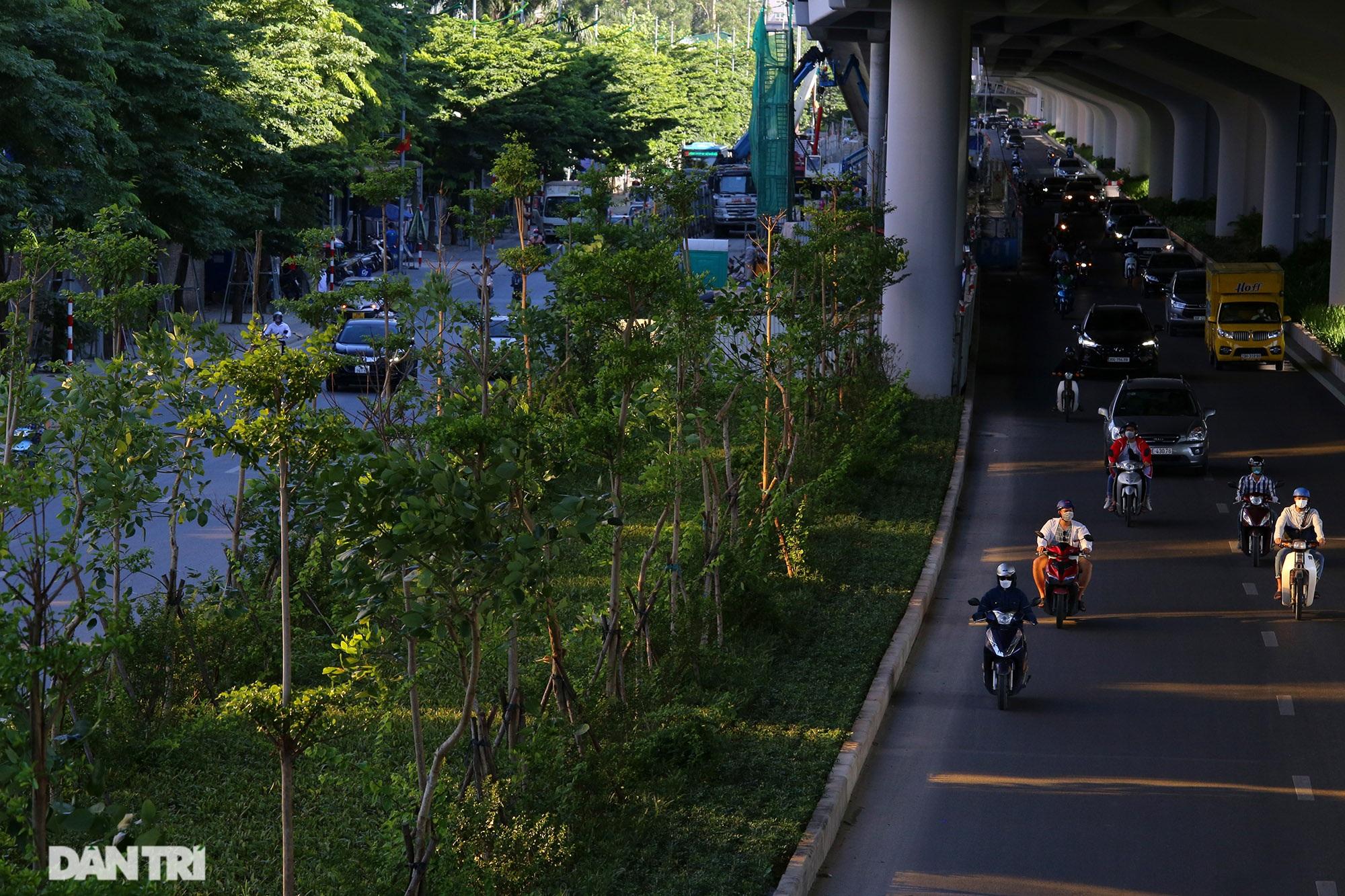 Con đường mát mẻ dài nhất Hà Nội giữa những ngày nắng nóng đỉnh điểm - 12