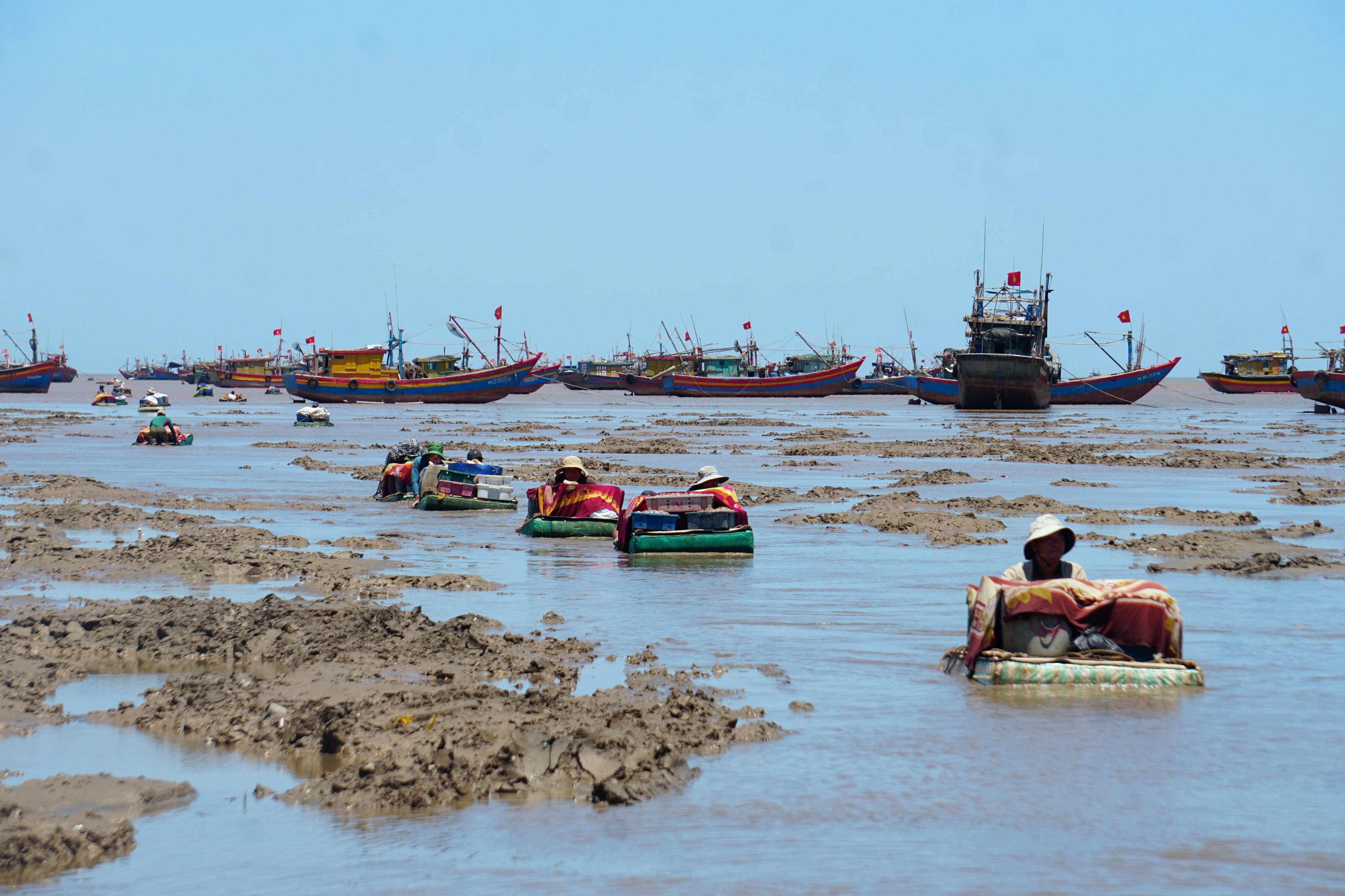 Ngư dân mướt mồ hôi lội bùn đẩy cạn giữa trưa nắng - 2