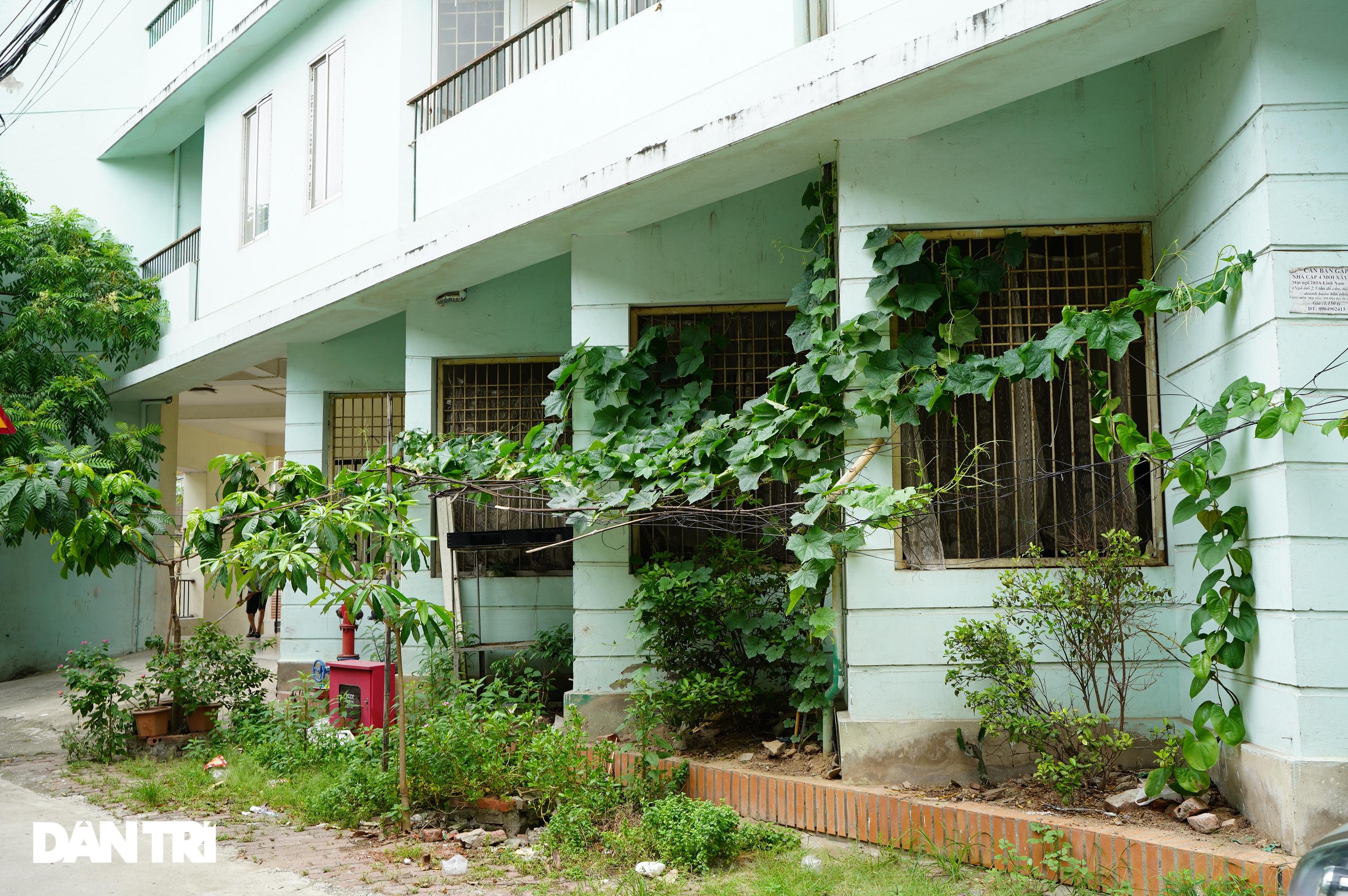 Xót xa hàng loạt khu chung cư cao tầng ở Hà Nội bị bỏ hoang nhiều năm - 17