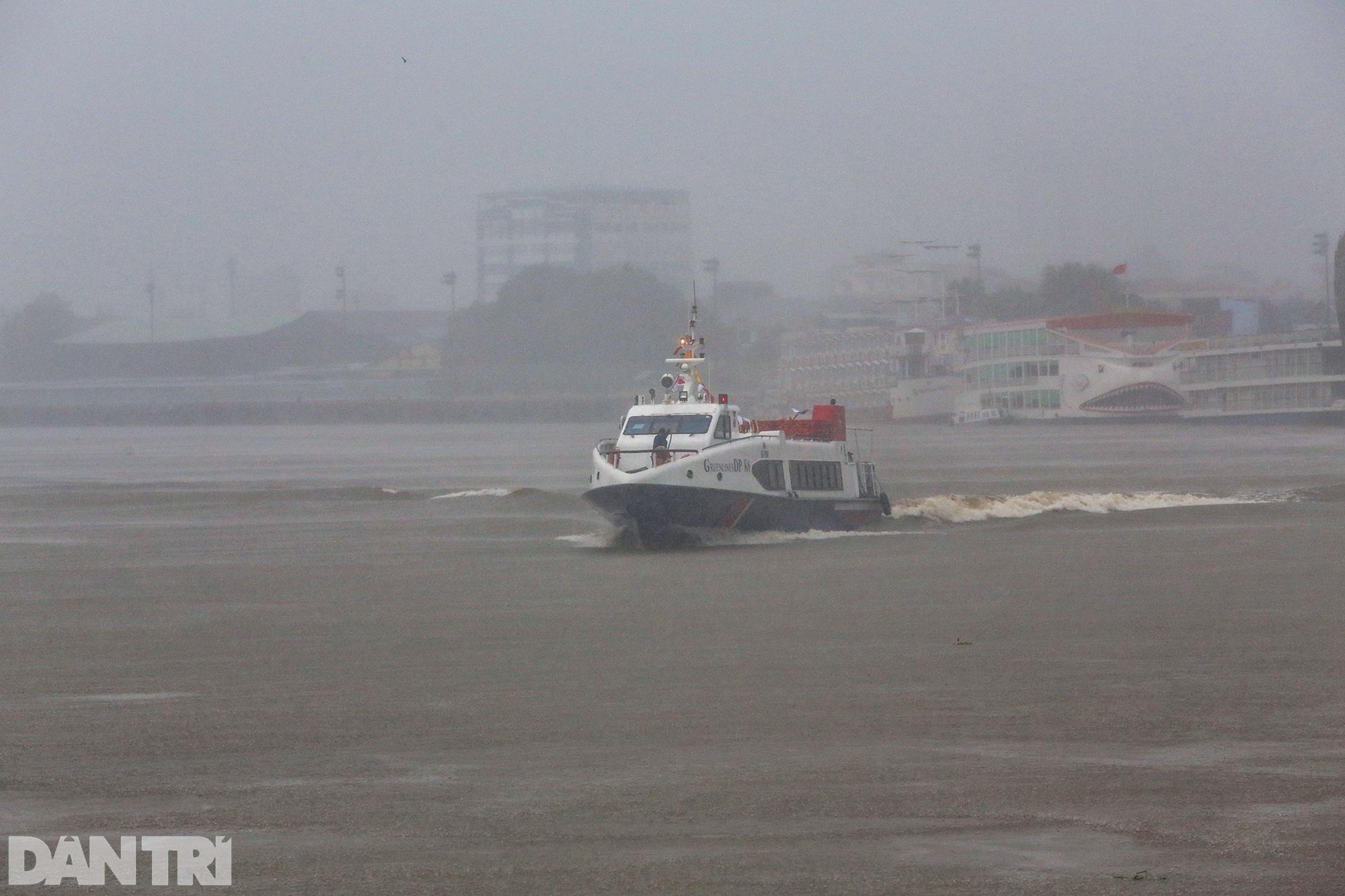 Tàu cao tốc lao như bay trên sông đưa 20 tấn rau củ miền Tây về TPHCM - 1