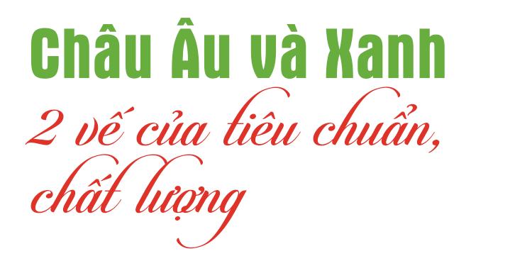 Tổng giám đốc doanh nghiệp ống nhựa hàng đầu Việt Nam: Chúng tôi là công ty duy nhất bảo hành sản phẩm 30 năm - 2