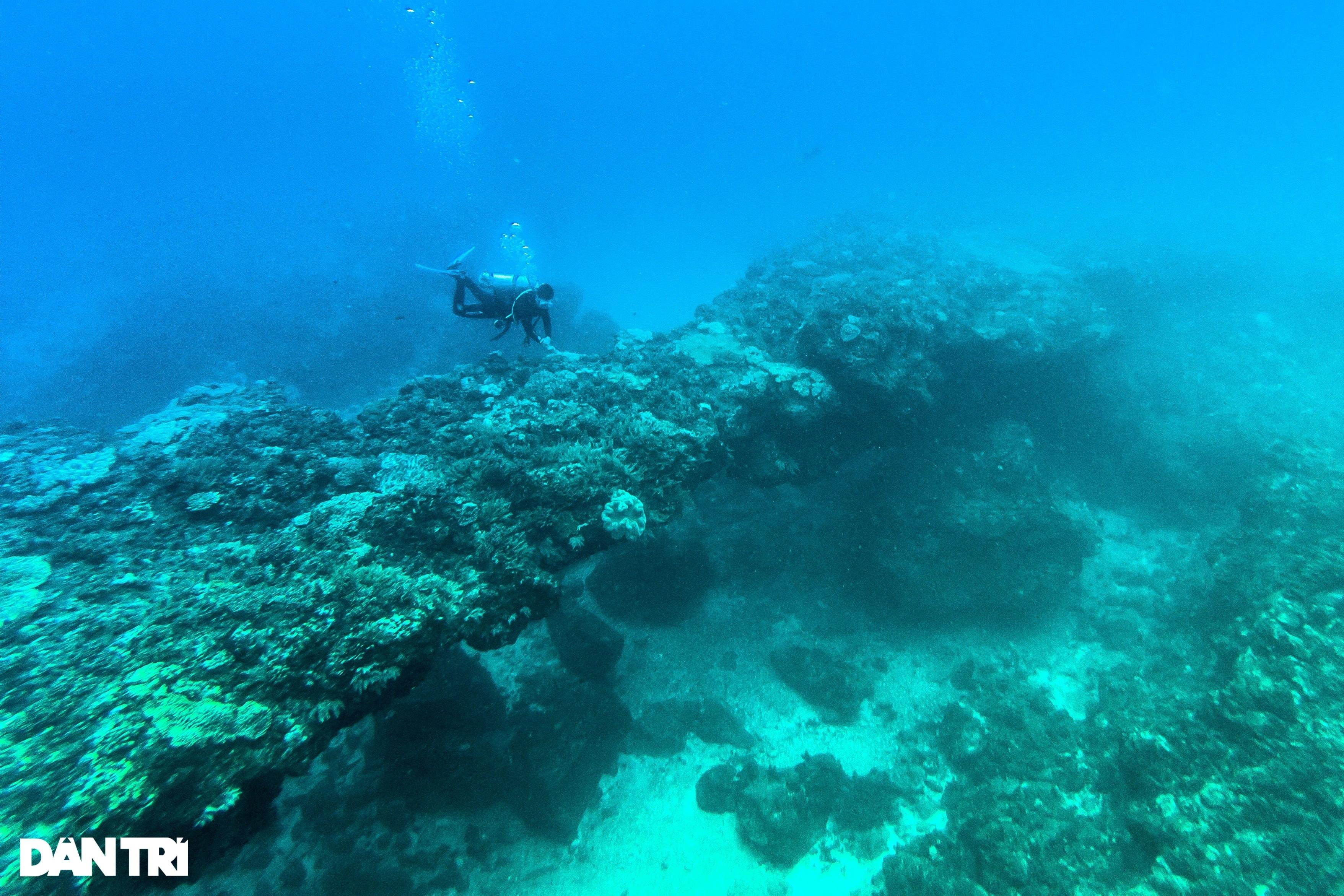 Núi lửa triệu năm tuổi và những cảnh đẹp hút hồn du khách ở đảo Lý Sơn - 7