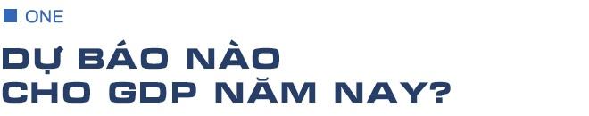 Việt Nam nên chuẩn bị cho việc mở cửa kinh tế trở lại như thế nào? - 1