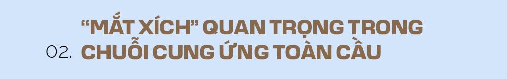 Nhận diện mắt xích Việt Nam và giá trị sức mạnh không thể tính bằng tiền - 8