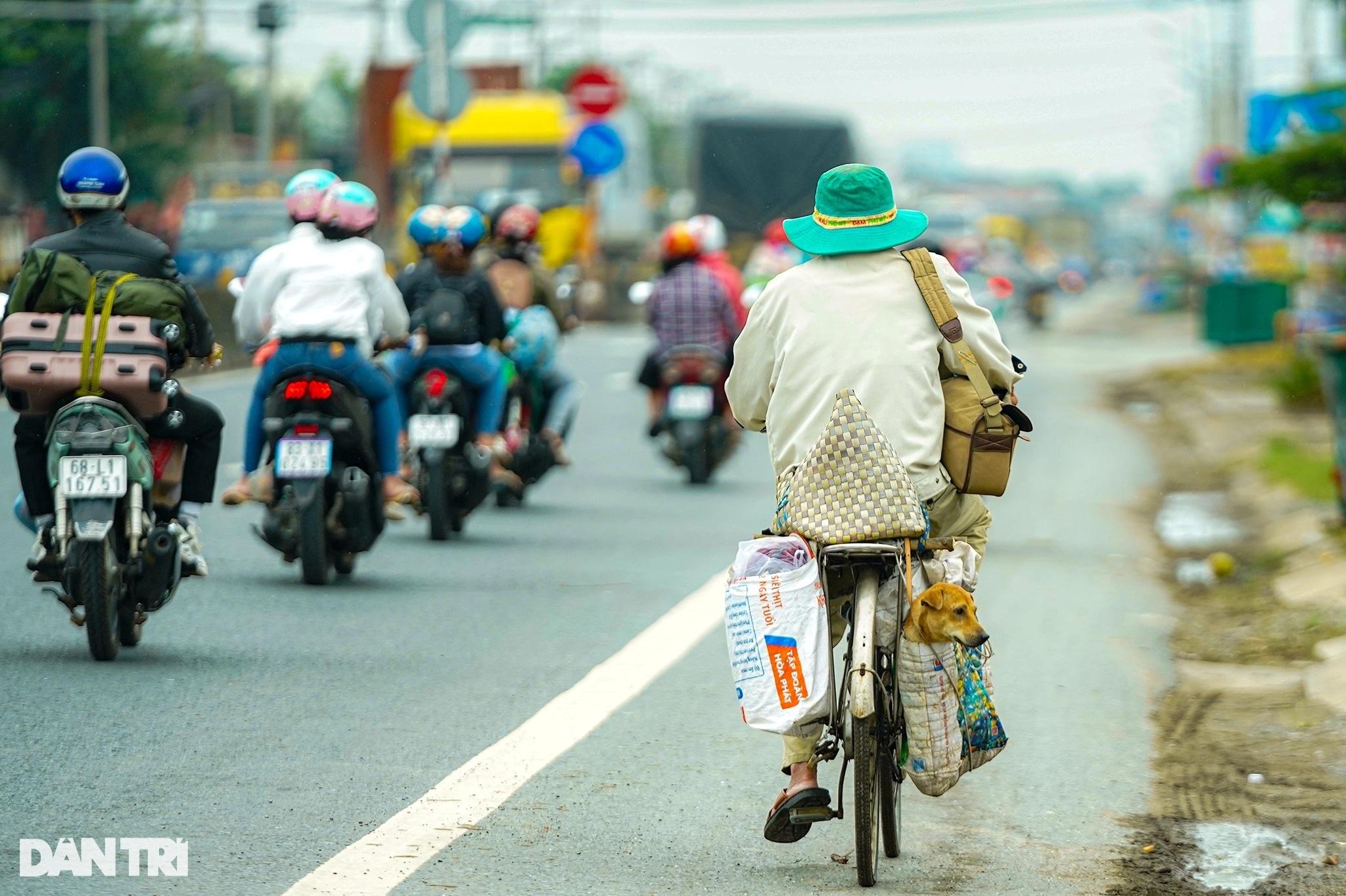 Rưng rưng cảnh lão Hạc đạp xe chở cậu  Vàng từ TPHCM về quê Bến Tre - 1