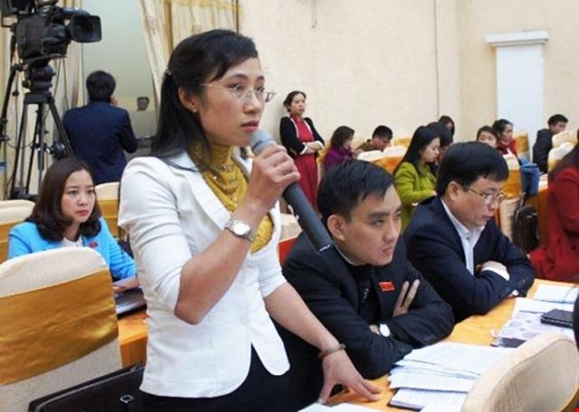 Theo đại biểu Đinh Thị An Phong thì cử tri tỉnh Nghệ An cho rằng thực tế của tỉnh này chưa phù hợp để triển khai rộng mô hình VNEN.