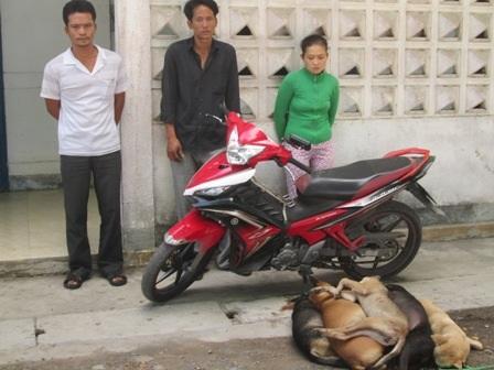 Các đối tượng trộm chó bị bắt giữ cùng tang vật